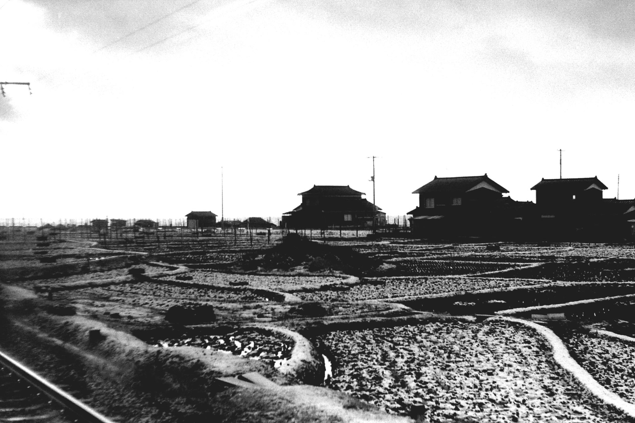 16/1/1989: 3: sea and rice fields