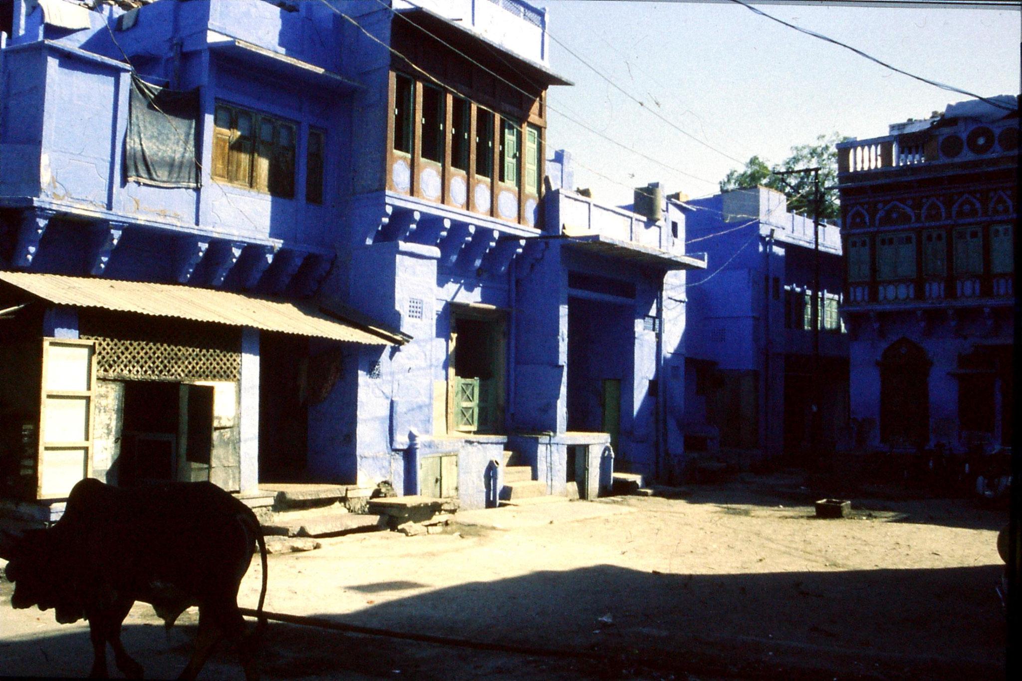 29/11/1989: 7: Jodhpur
