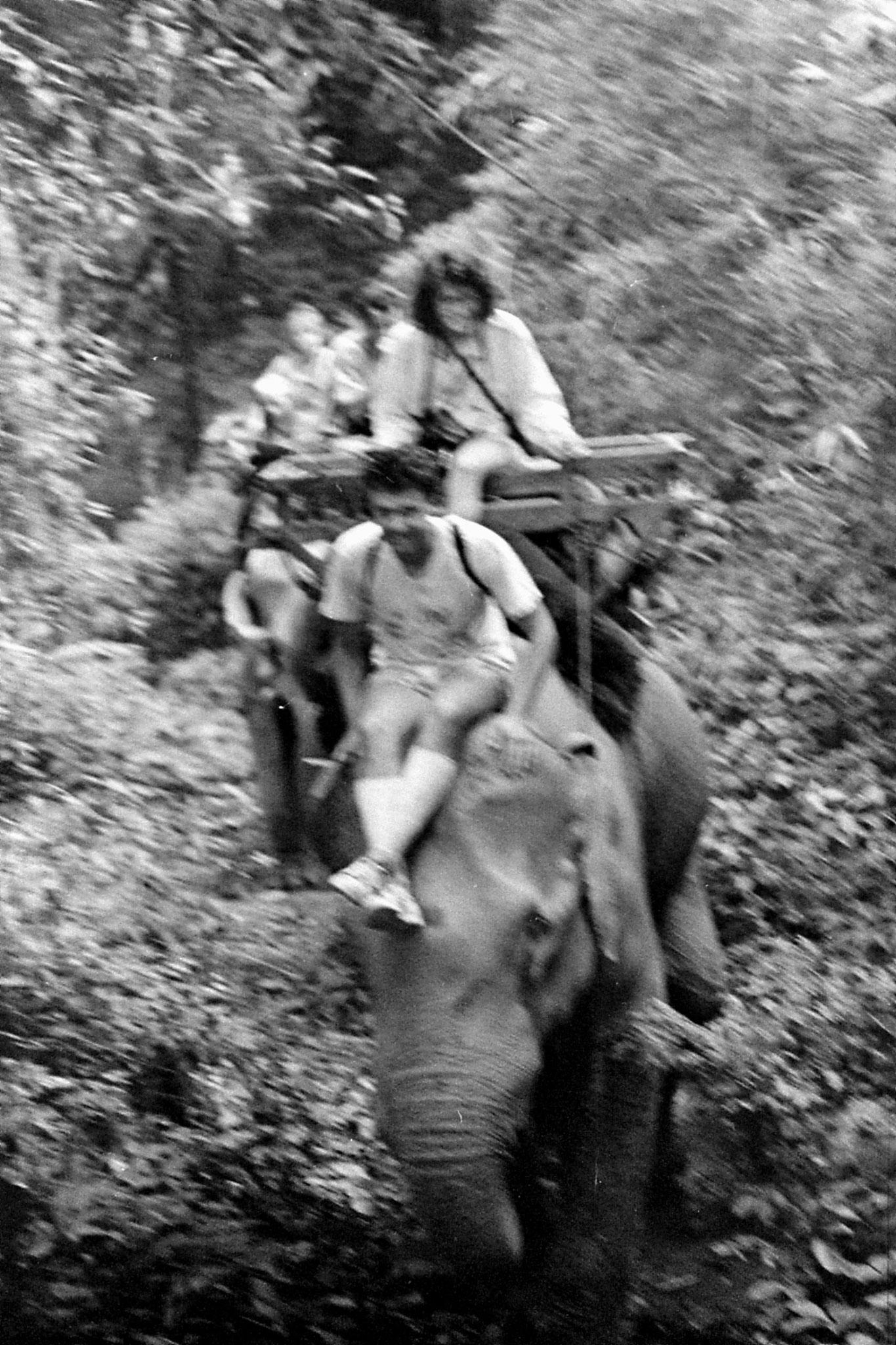 13/6/1990: 25: Last day of Trek, on elephant