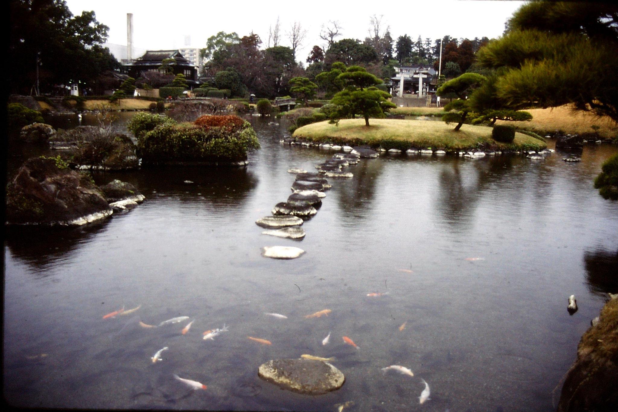 22/1/1989: 6: Kumamoto Gardens