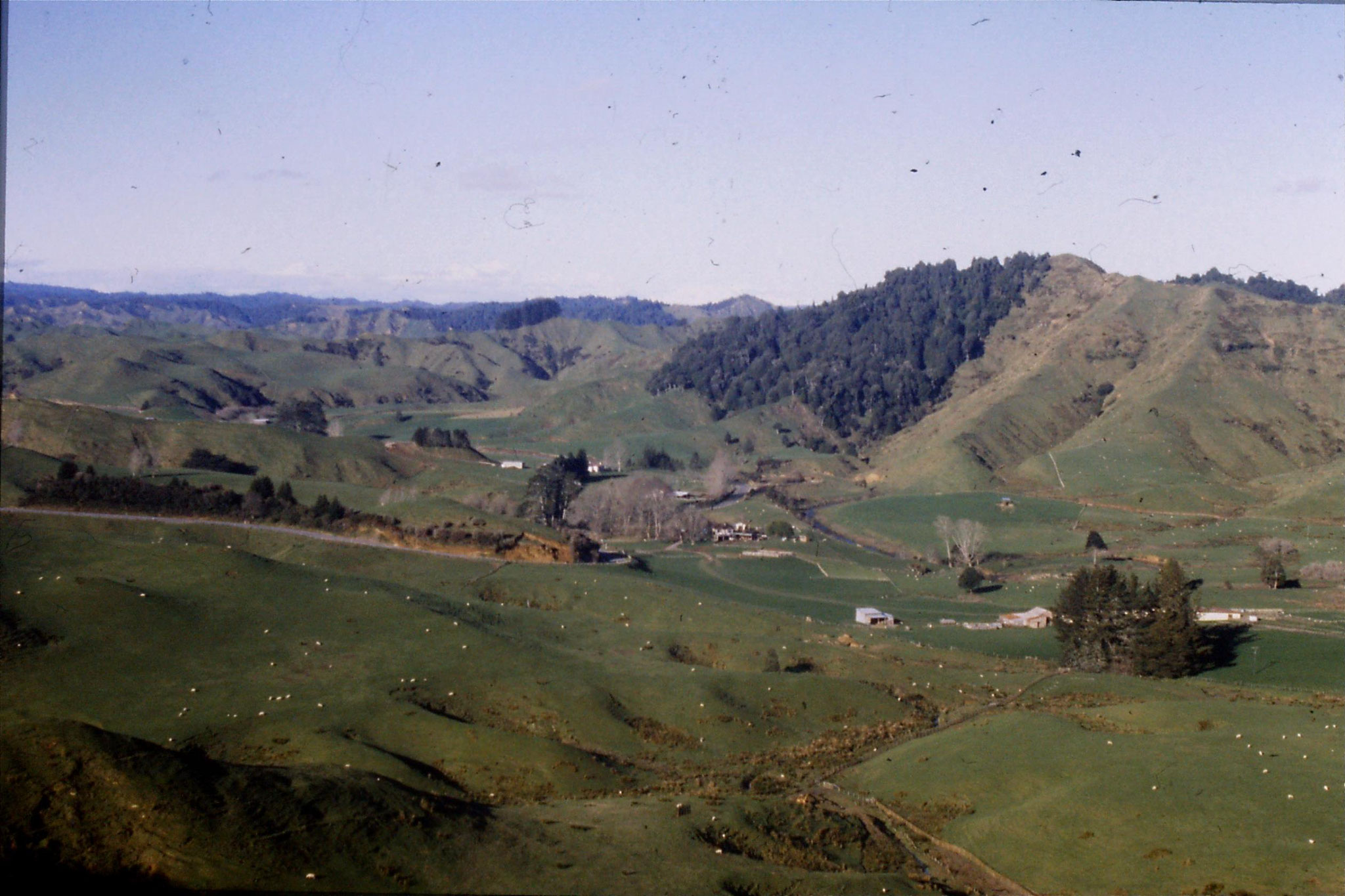 28/8/1990: 20: Ruapehu from Strathmore Saddle