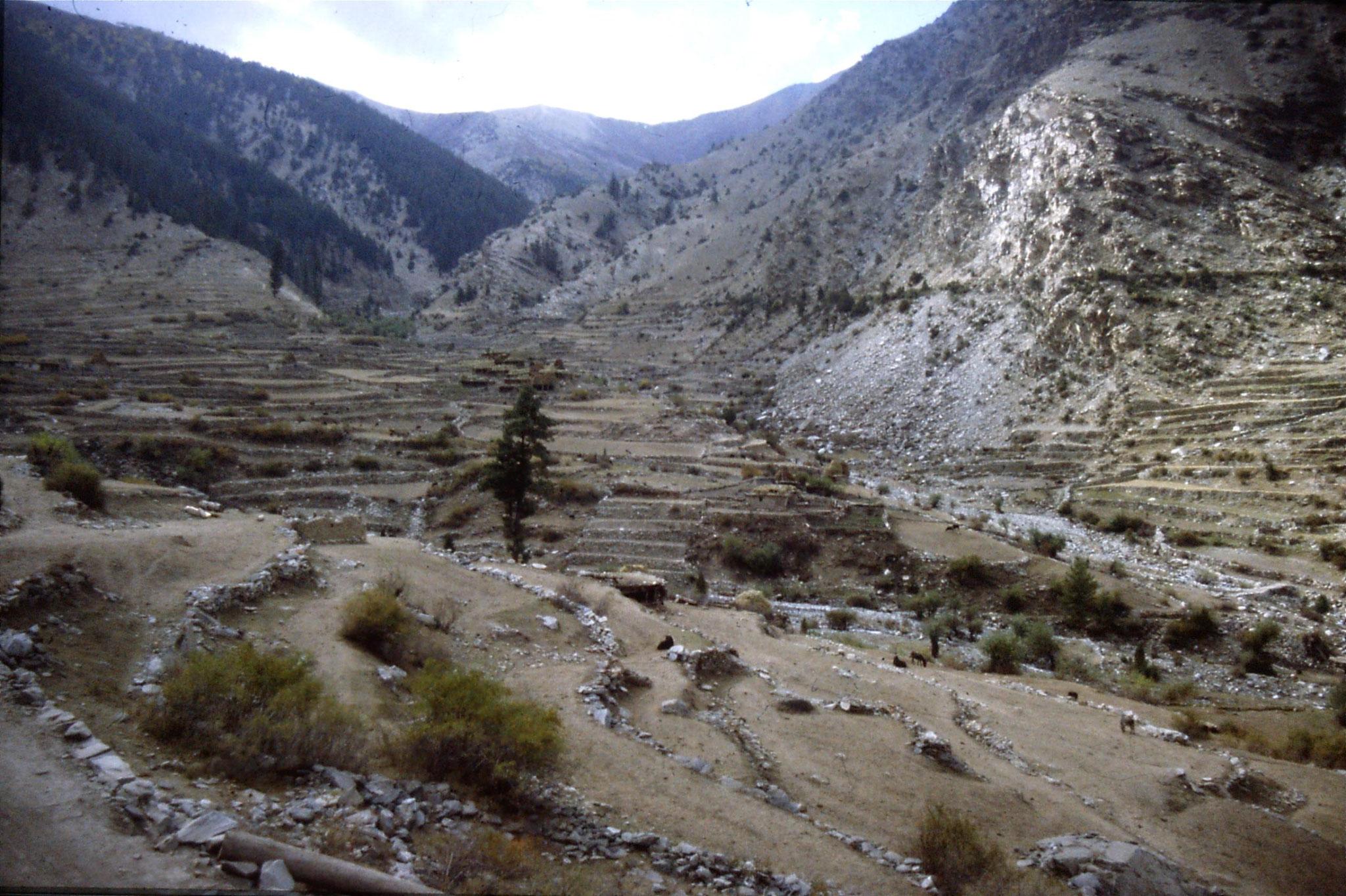 6/10/1989: 35: Babusar village