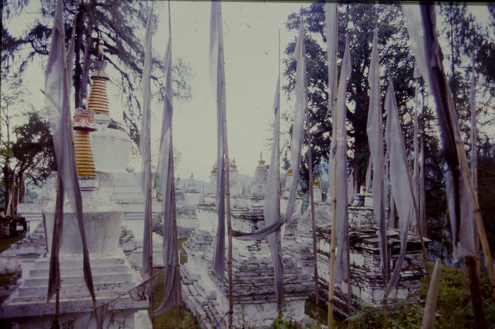 29/4/1990: 3: Tashiding gompas