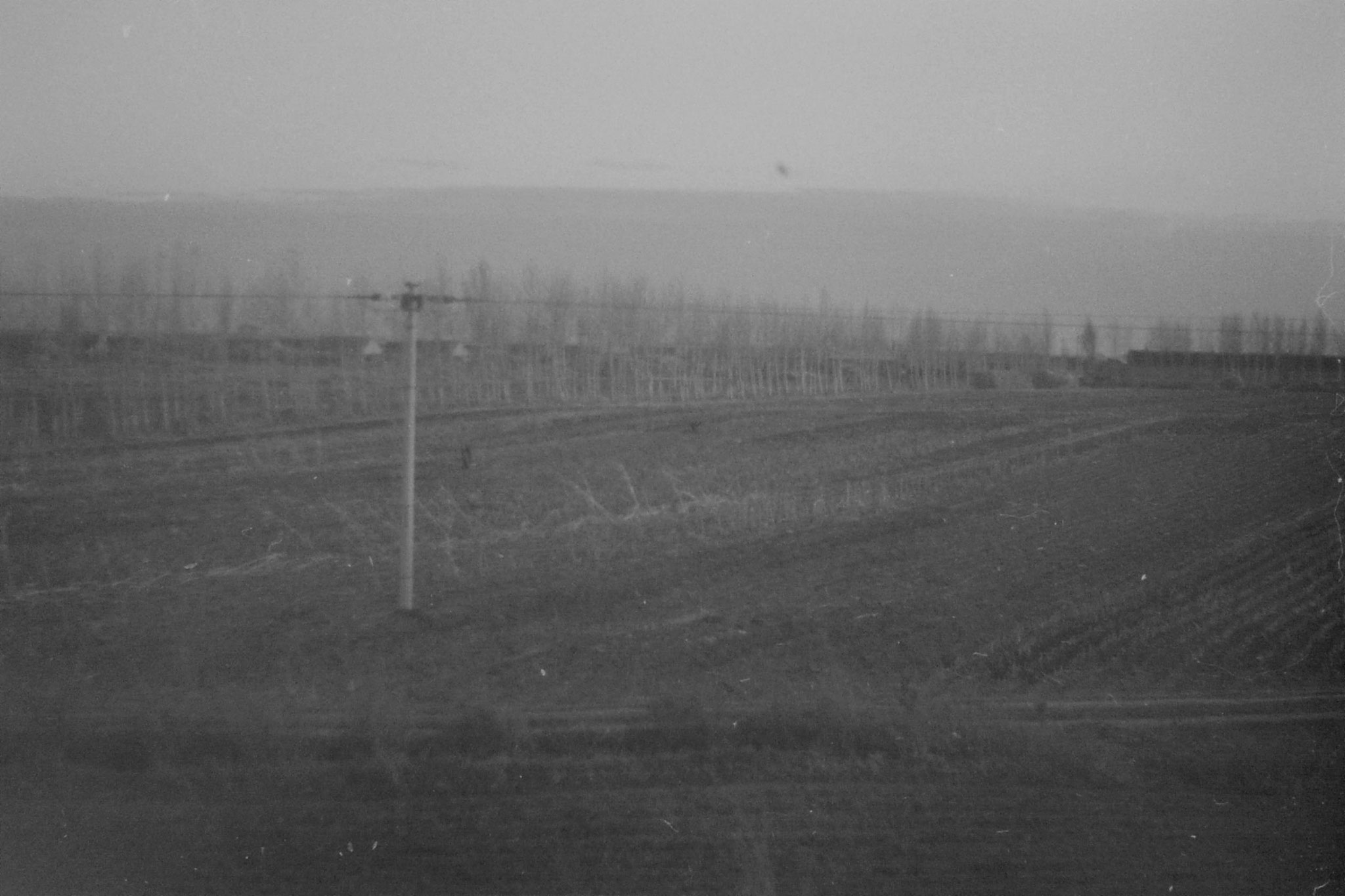 27/10/1988: 25: fields after Harbin