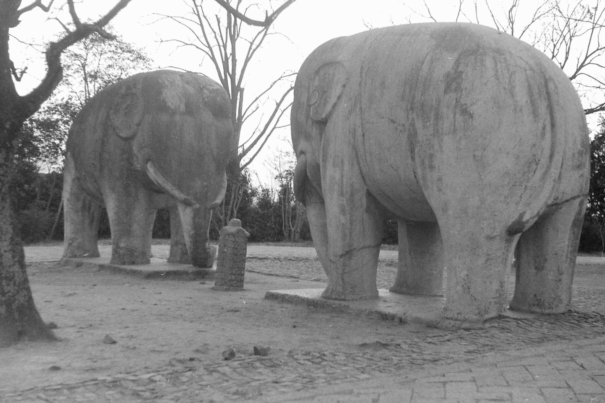 12/12/1988: 26: Nanjing, Linggu Park