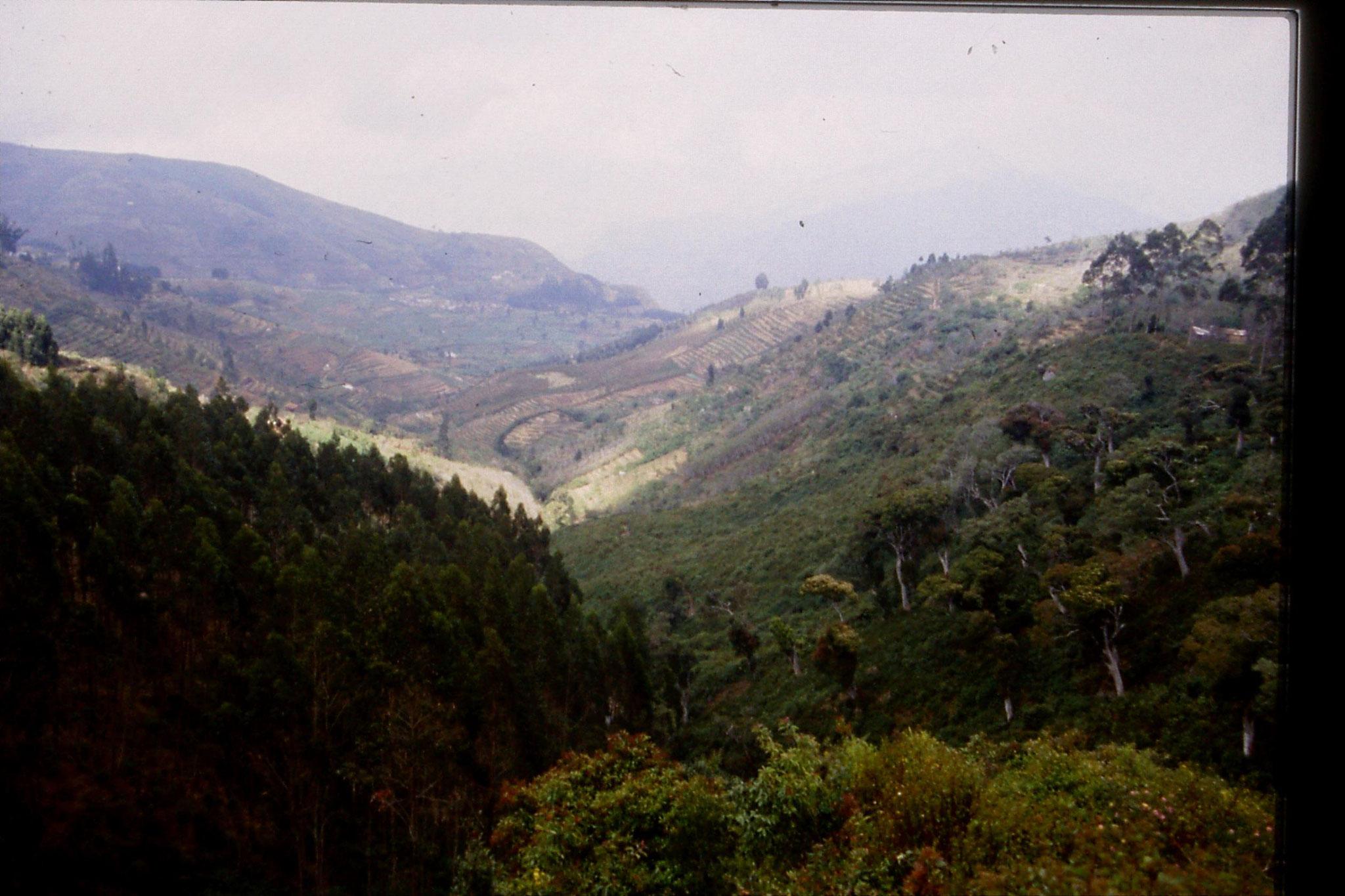 104/23: 20/2/1990 Vilpatti village and surroundings from Kodai road