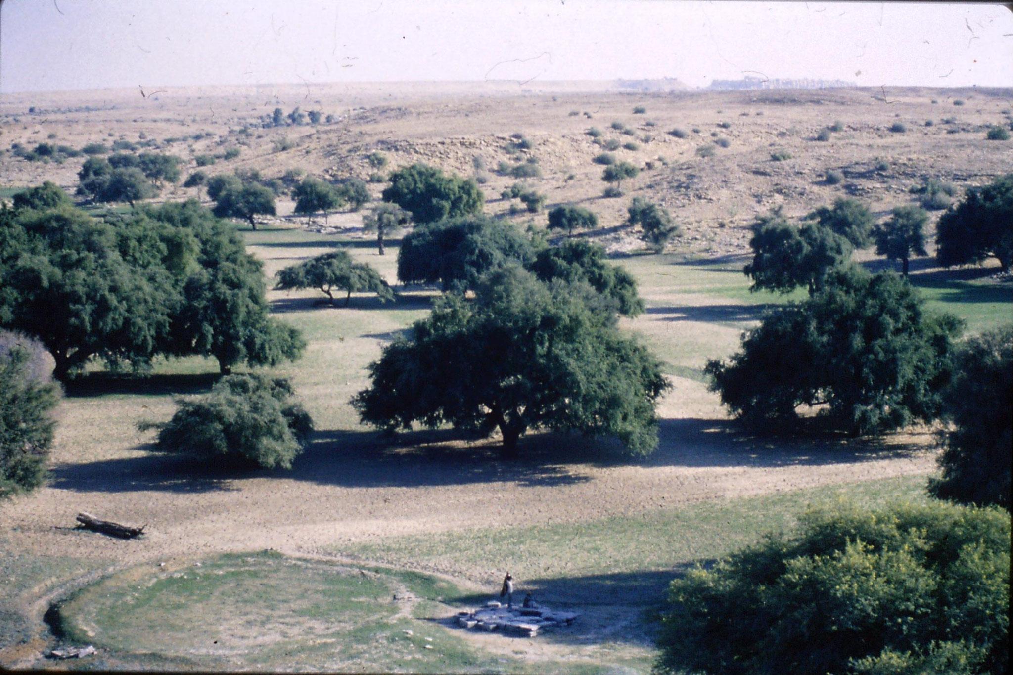 4/12/1989: 10: irrigation well and Jaisalmer