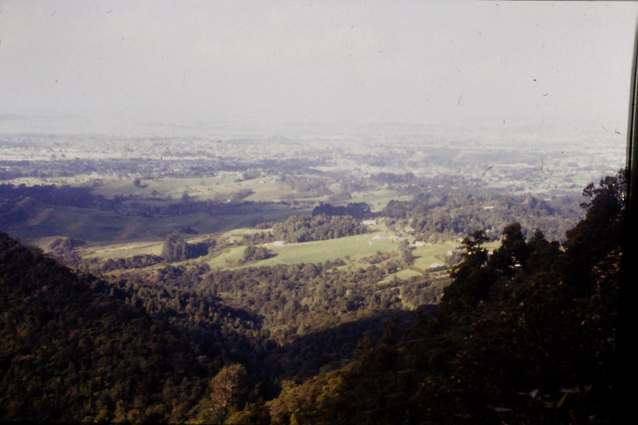 7/9/1990: 16: view towards Auckland from Parkinson's lookout on Waitakere Range