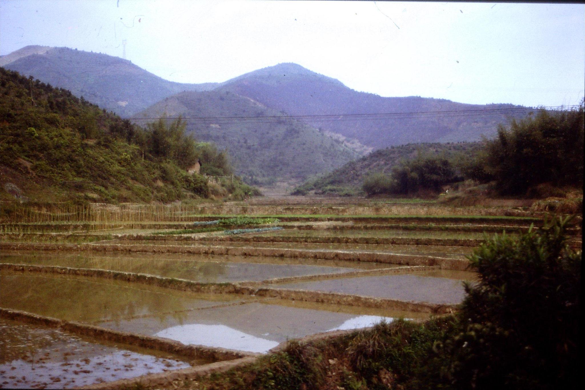29/3/1989: 8: Fujian 0950