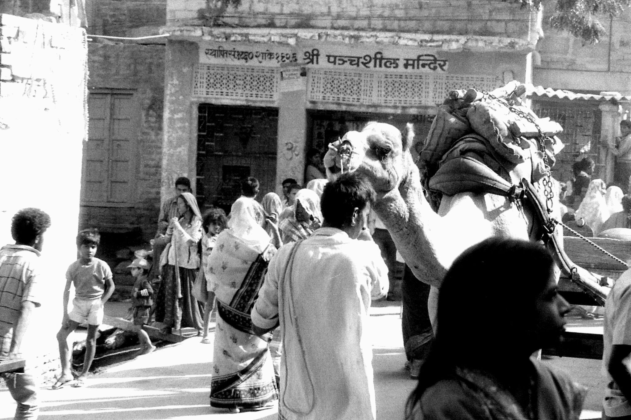 3/12/1989: 34: Jaisalmer camel and wedding procession