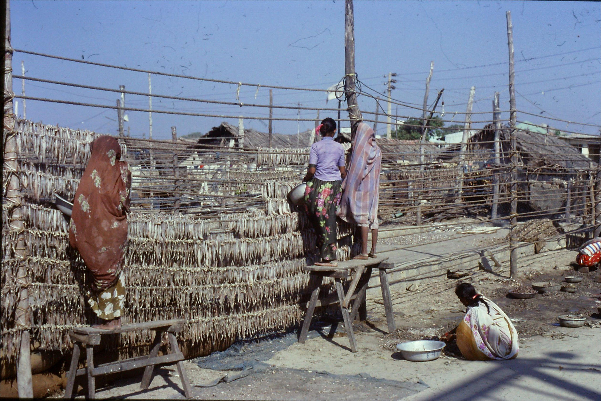 16/12/1989: 6: Diu Goghla fisherwomen