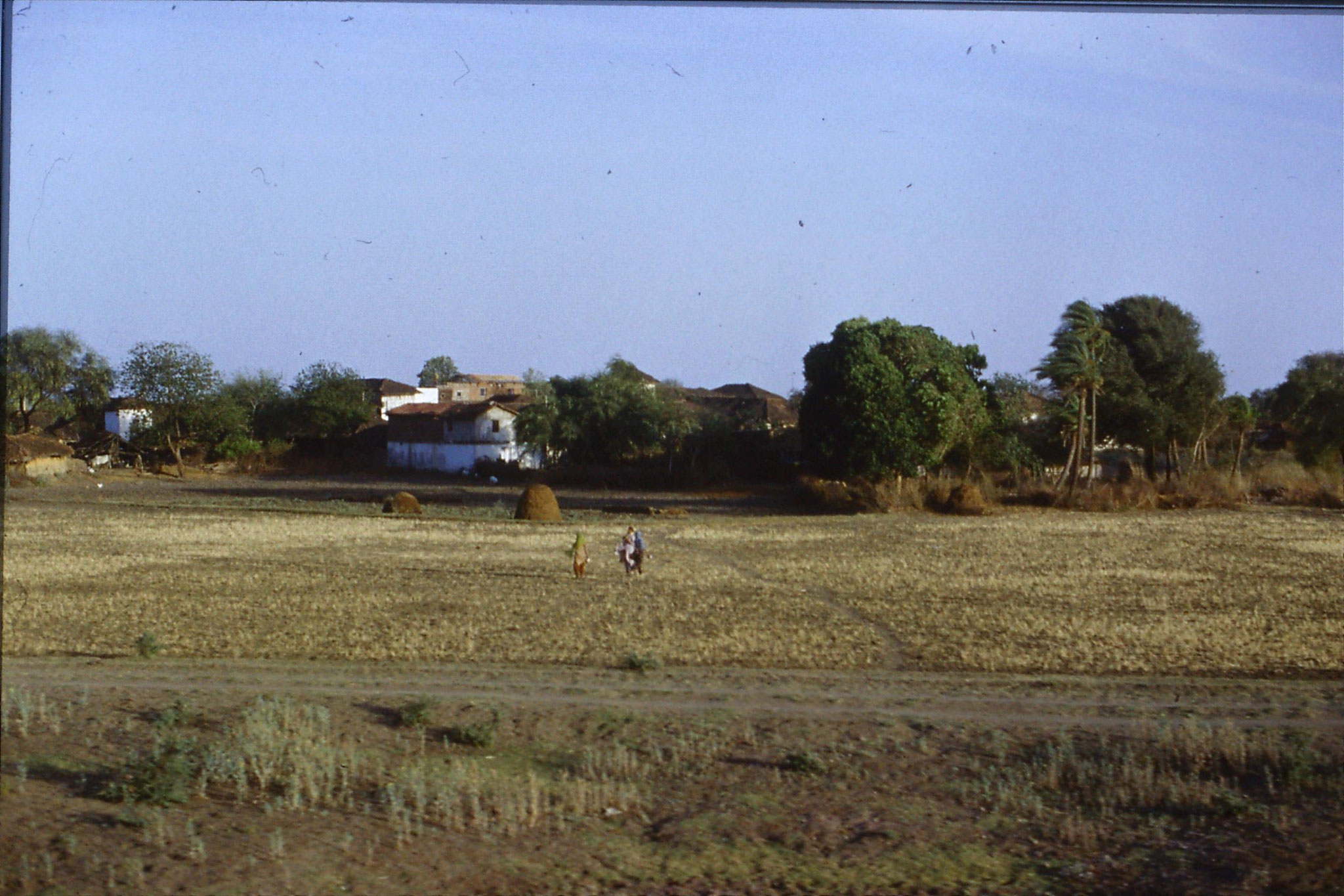 108/32: 24/3/1990 on train soon after Bhopal looking east