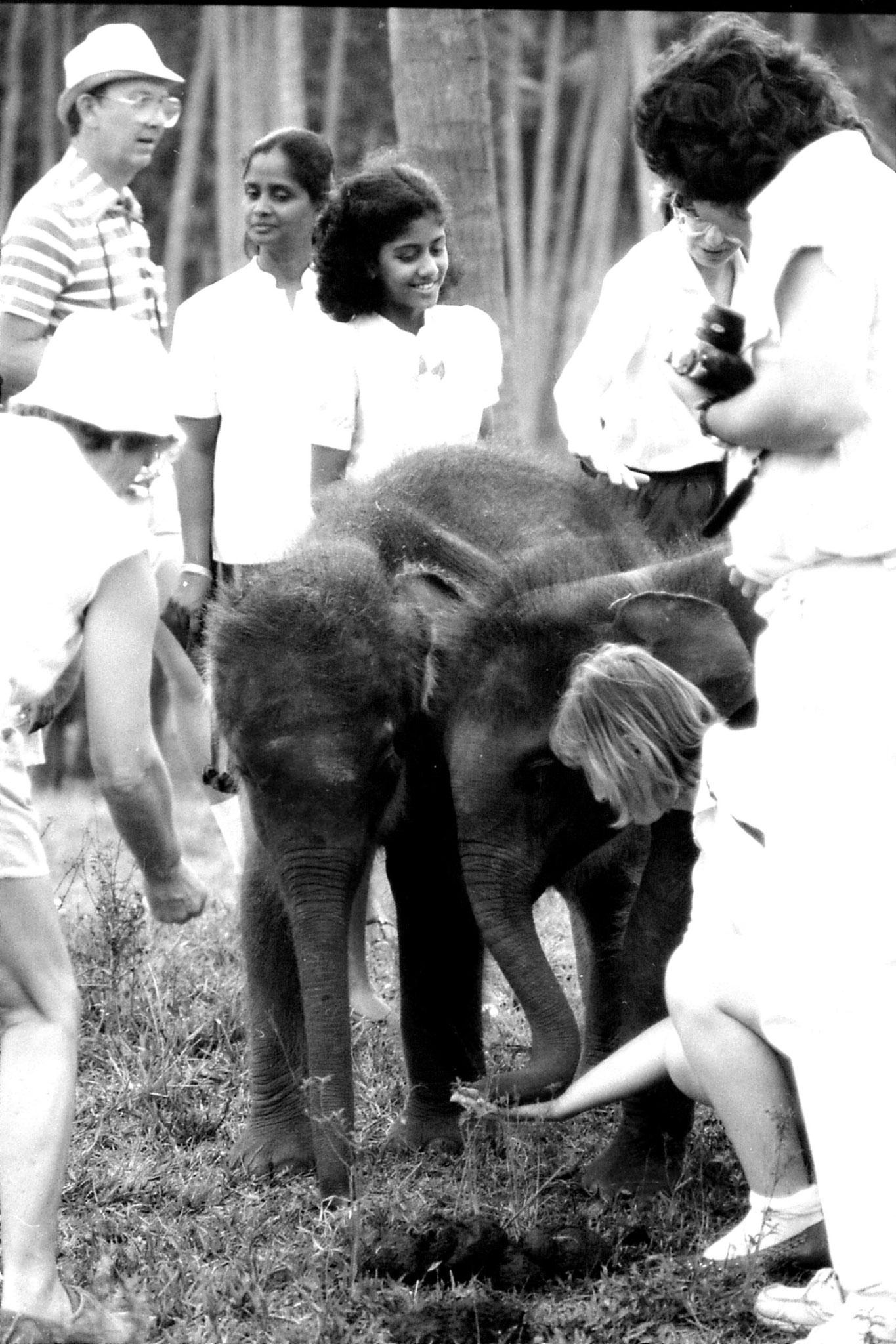10/2/90: 31: Kegalla elephant orphanage