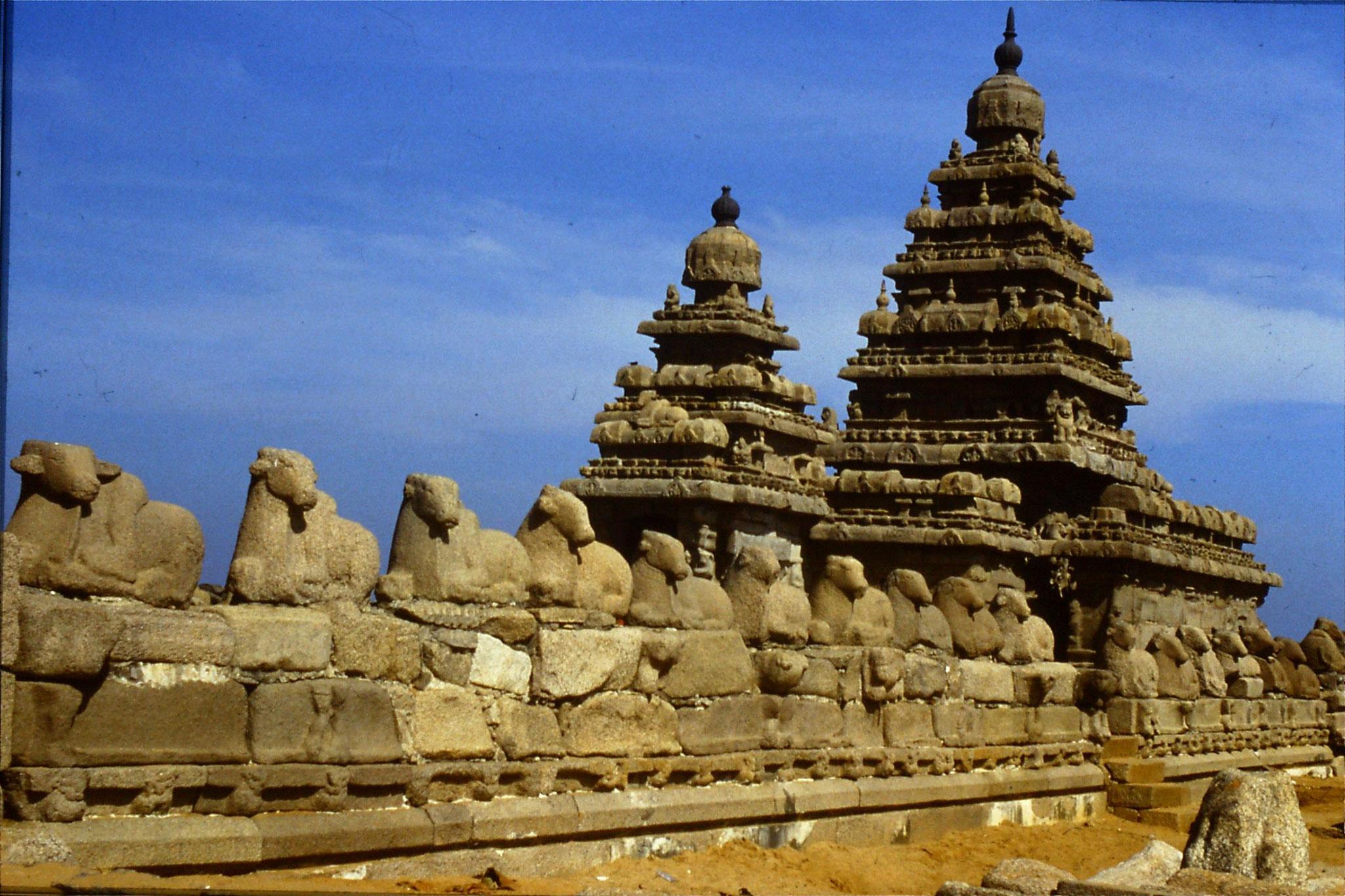 19/1/1990: 20: Mahabalipuram Shiva Temple