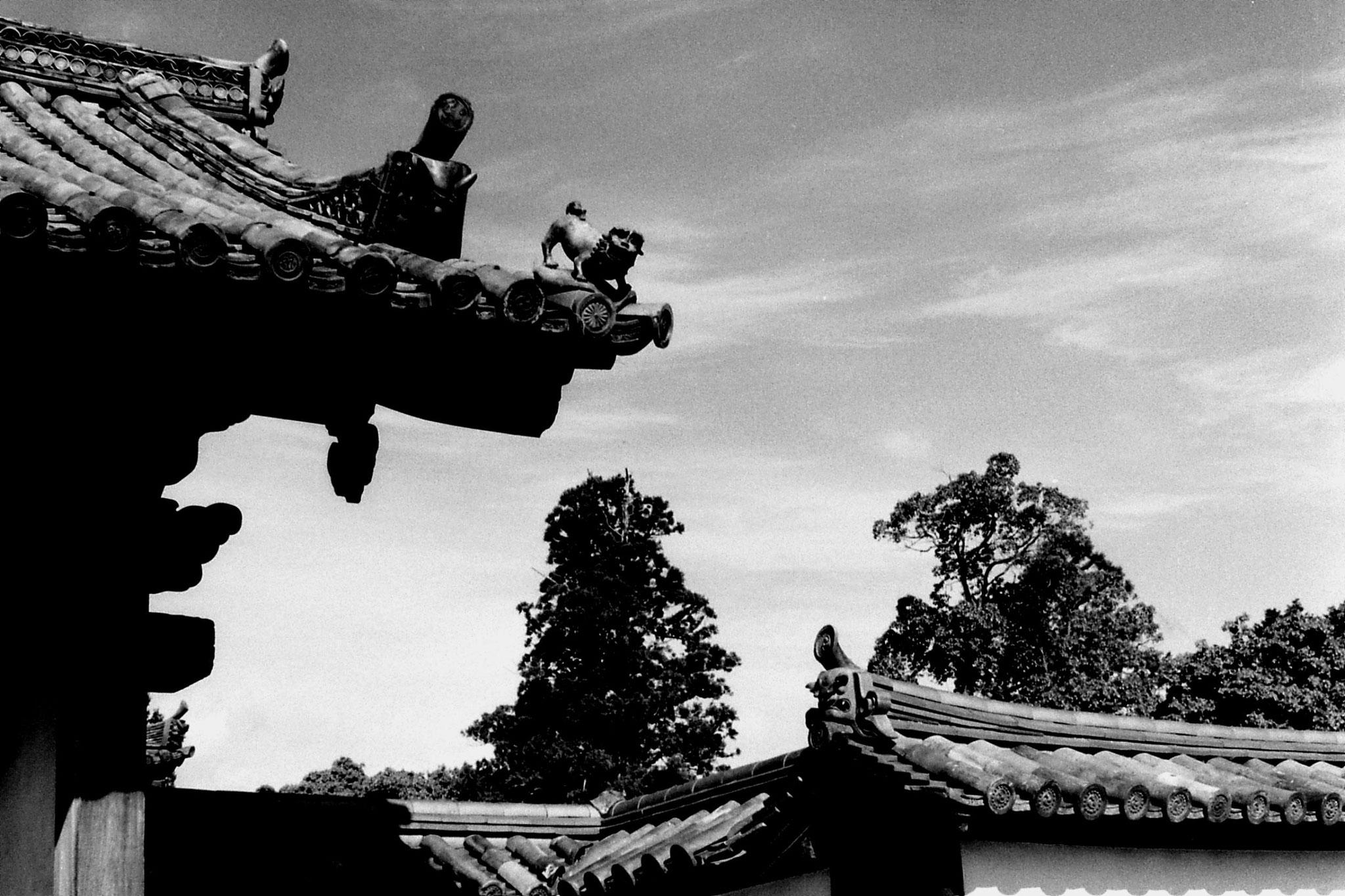 25/1/1989: 37:Nara