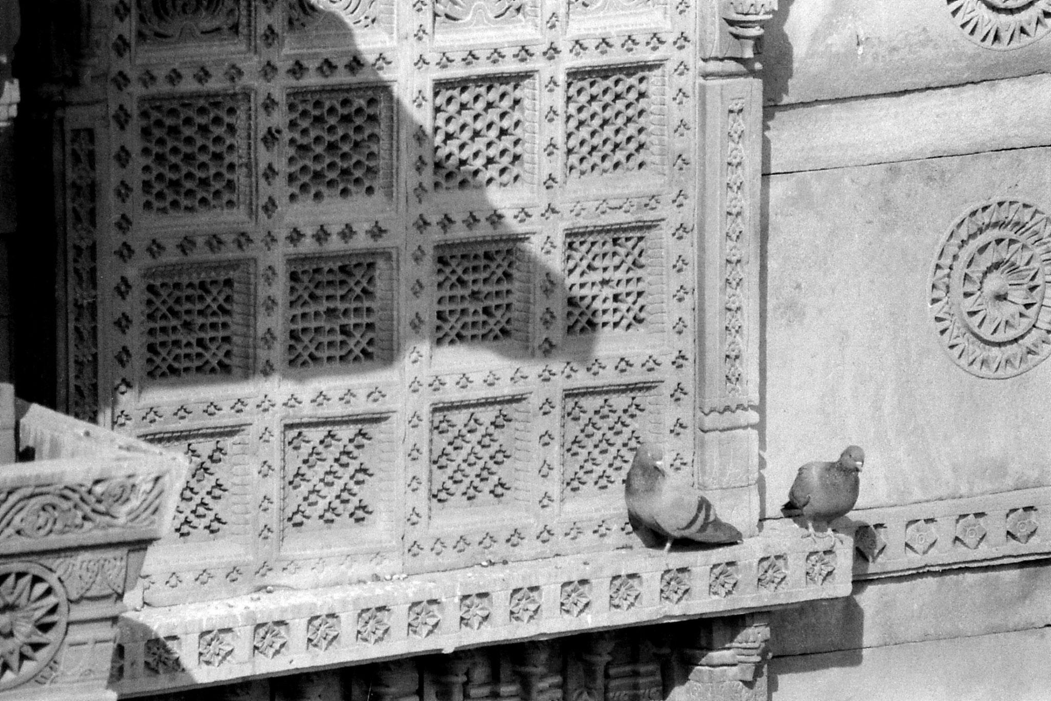 2/12/1989: 9: Jaisalmer