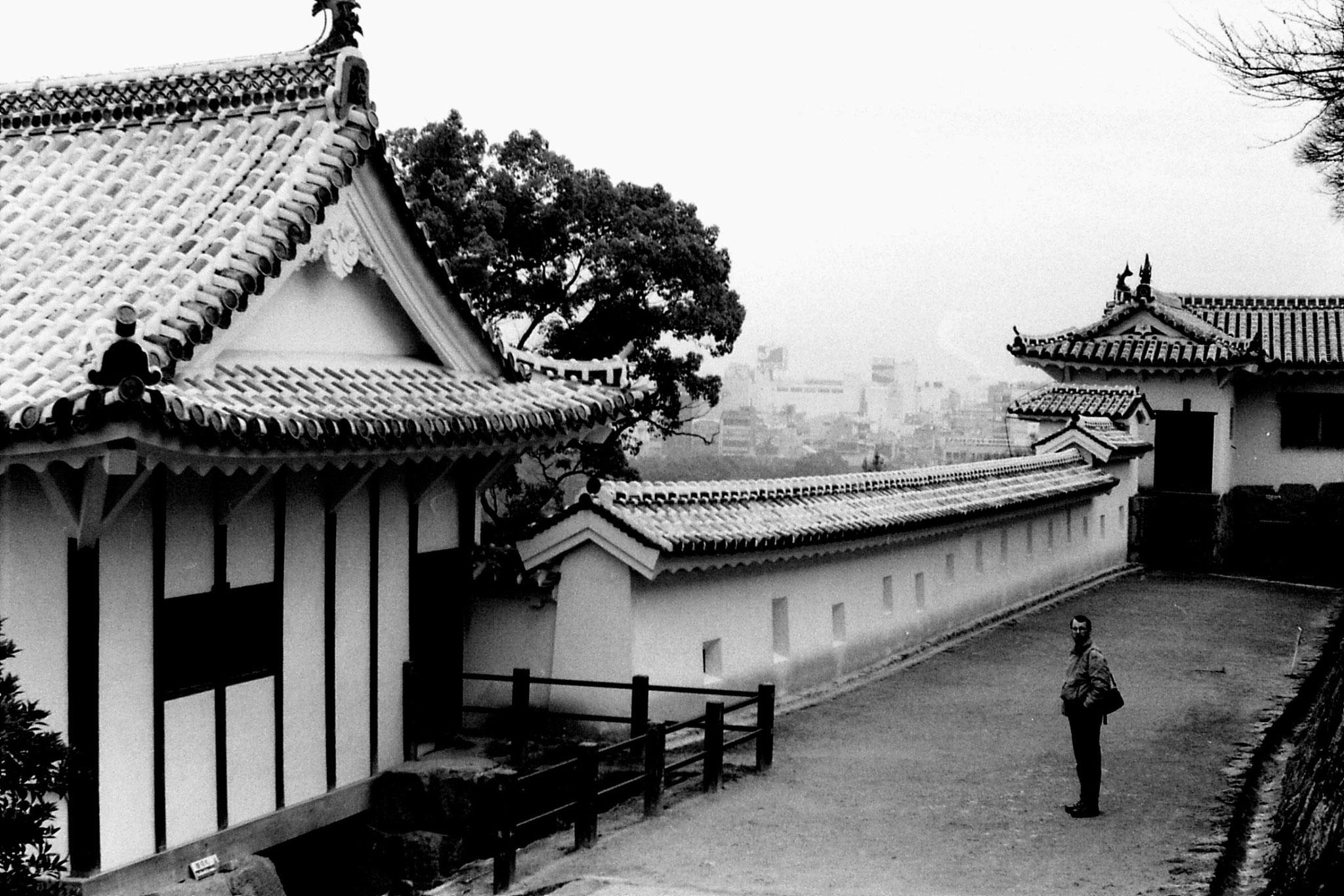 18/1/1989: 12: Himeji Castle