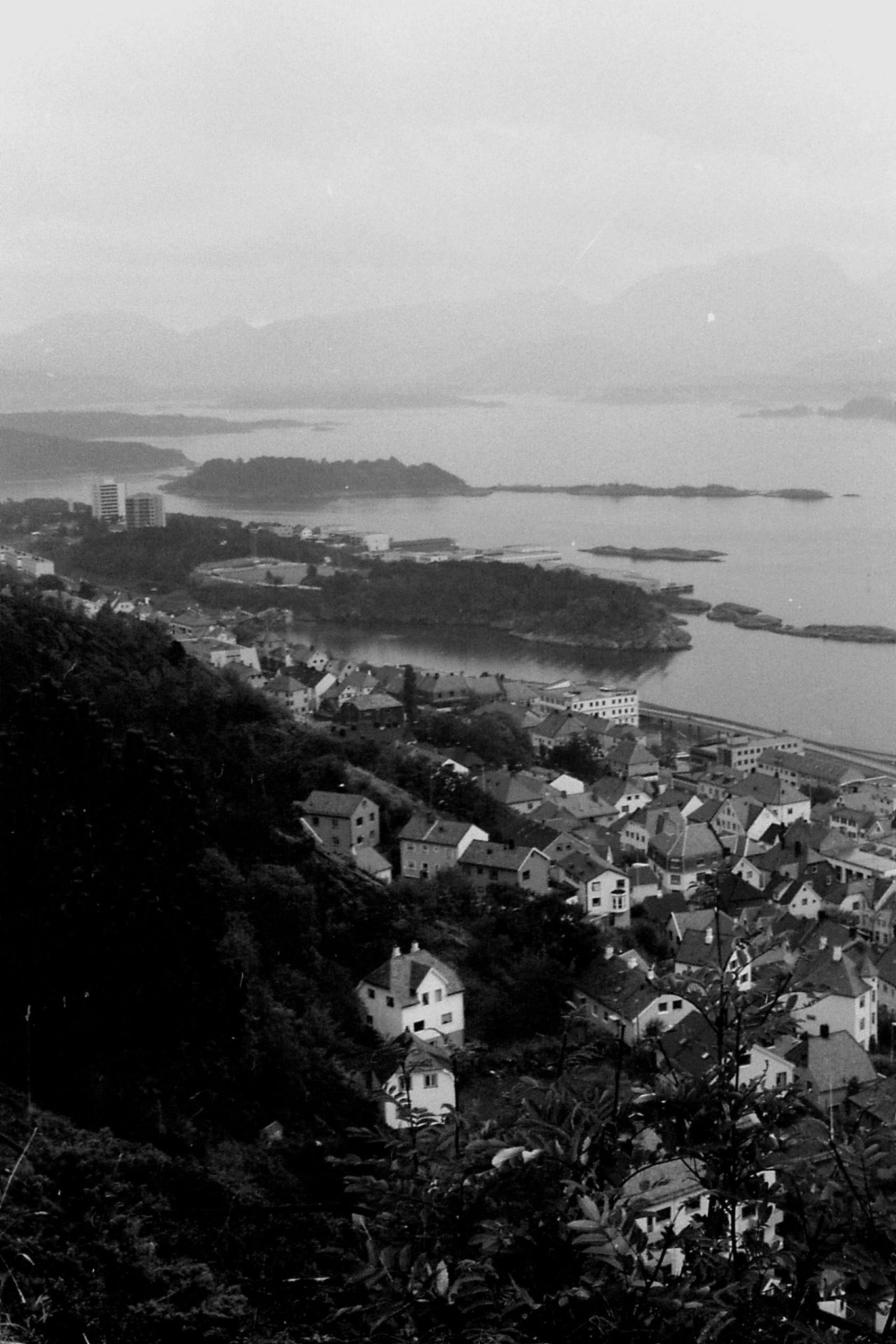 31: Alesund from hill