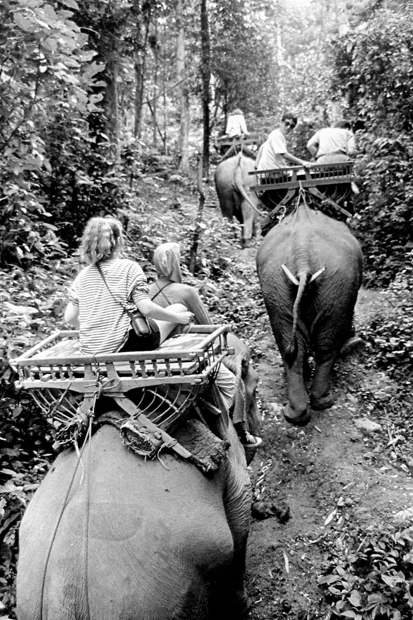 13/6/1990: 24: Last day of Trek, on elephant