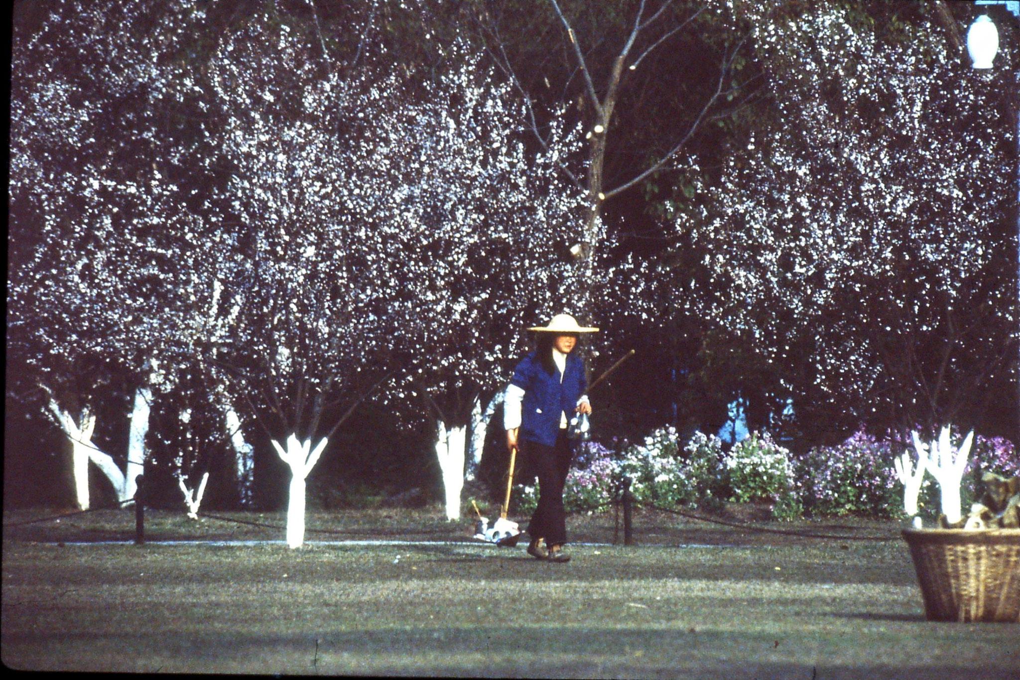 26/3/1989: 22: Huageng Park