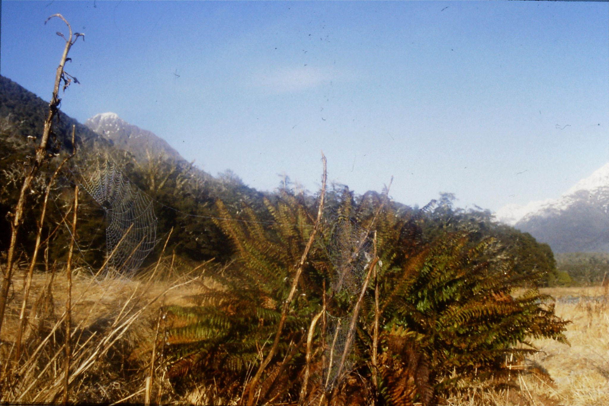 15/8/1990: 32: view from camp site