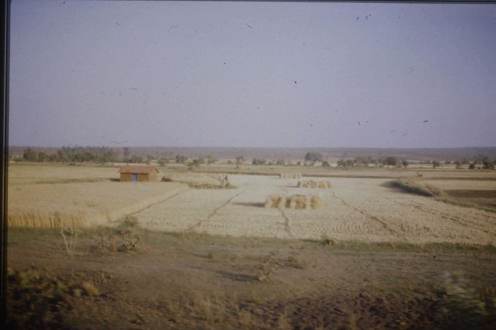 108/31: 24/3/1990 on train soon after Bhopal looking east
