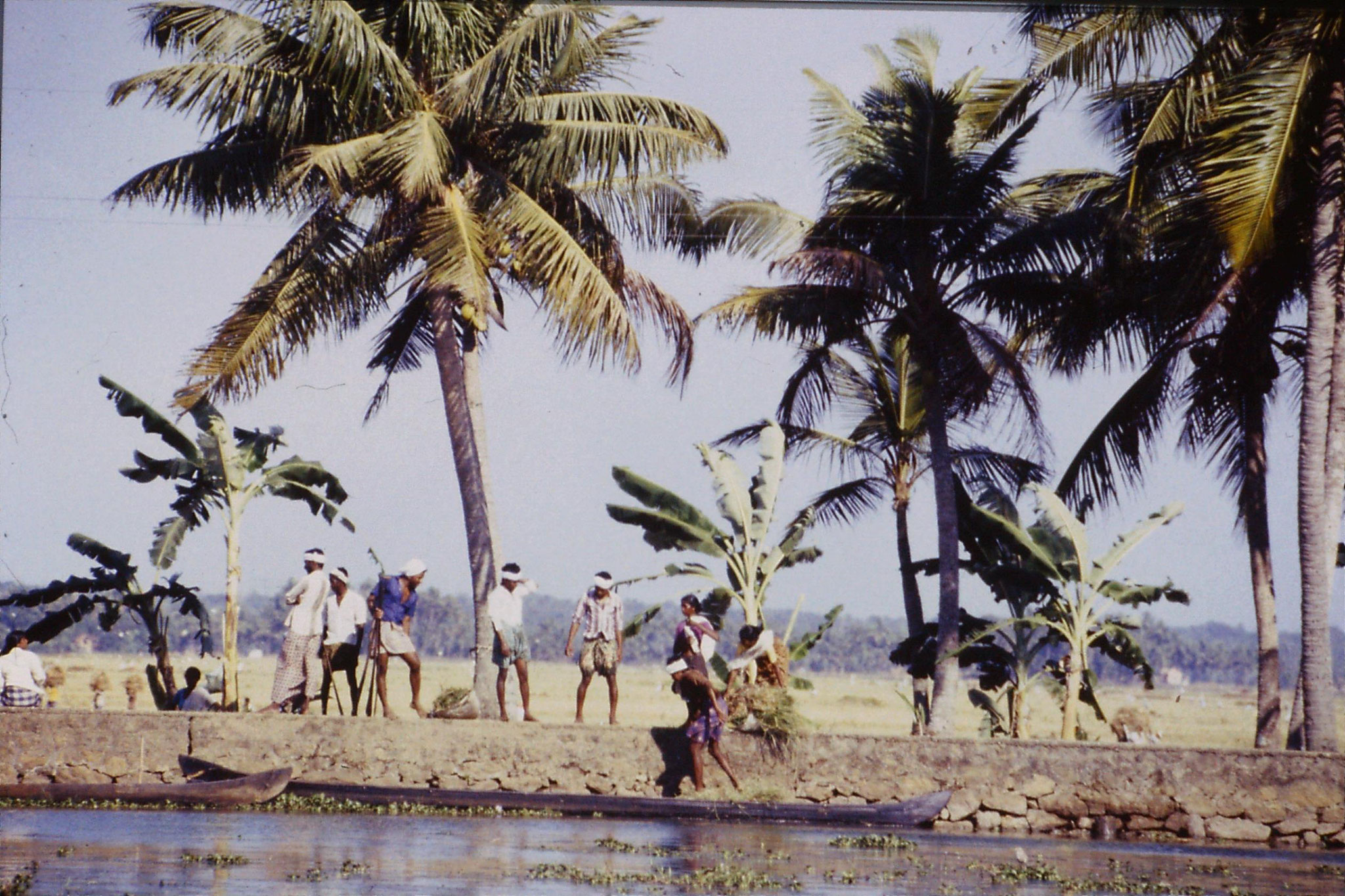 106/7: 23/2/1990 Boat to Alleppey