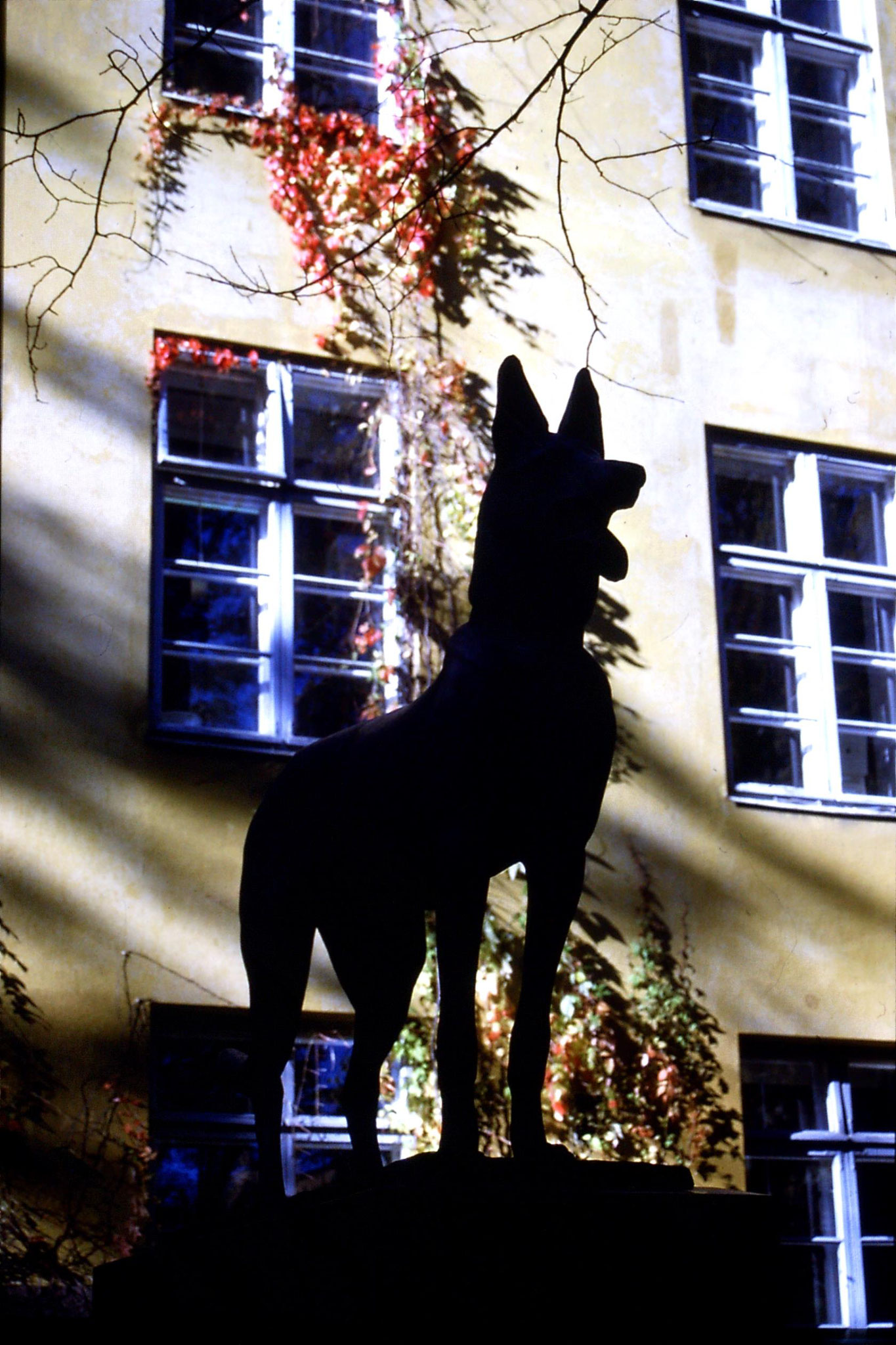 30/9/1988: 33: Dog statue outside Salus, public health institute
