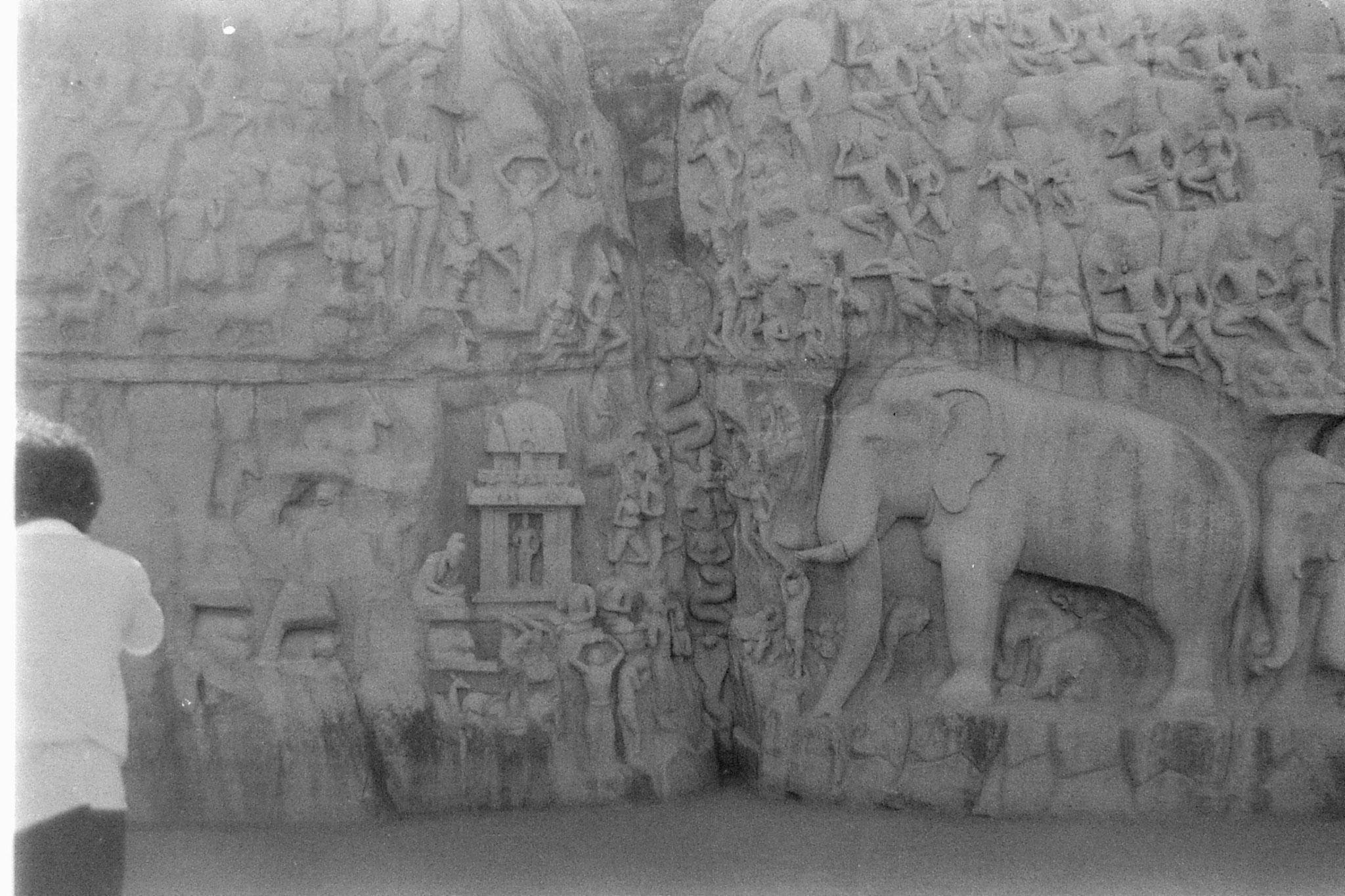 19/1/90: 27: Mahabalipuram - Arjuna penance to Shiva