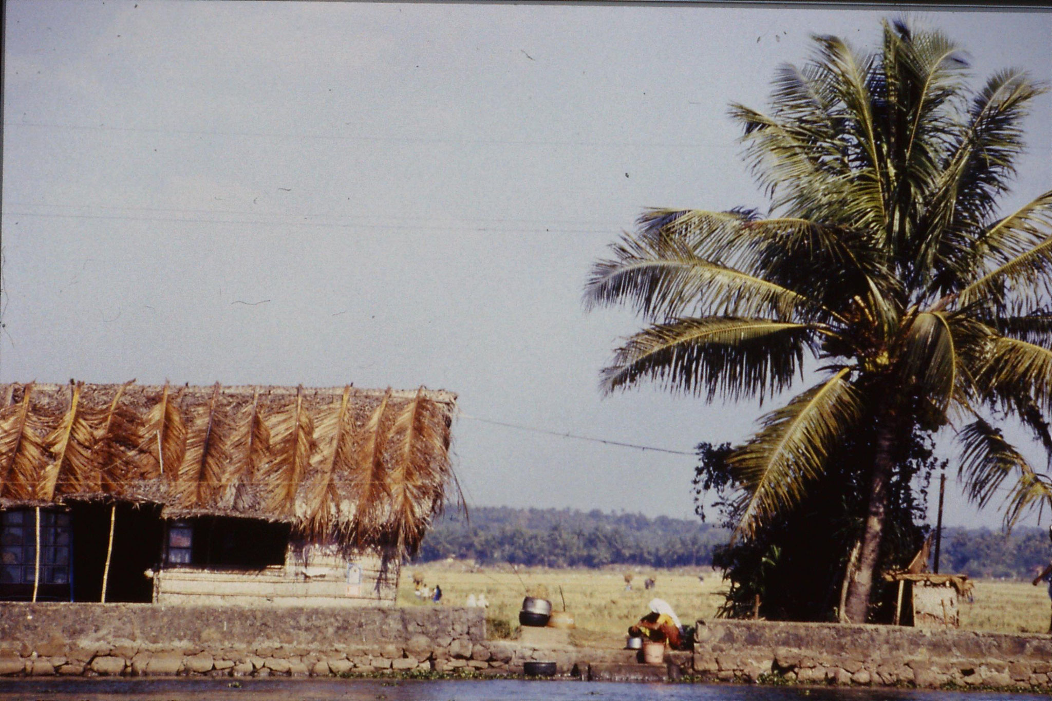 106/6: 23/2/1990  Boat to Alleppey