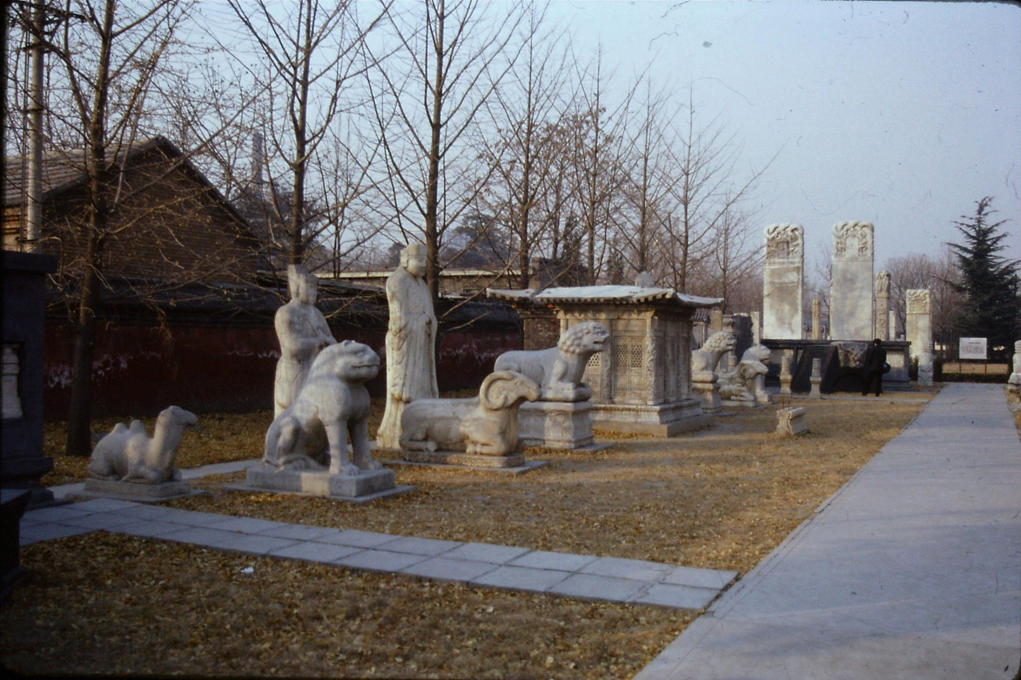 29/11/1988: 10:Wutasi Five Pagoda Temple near zoo