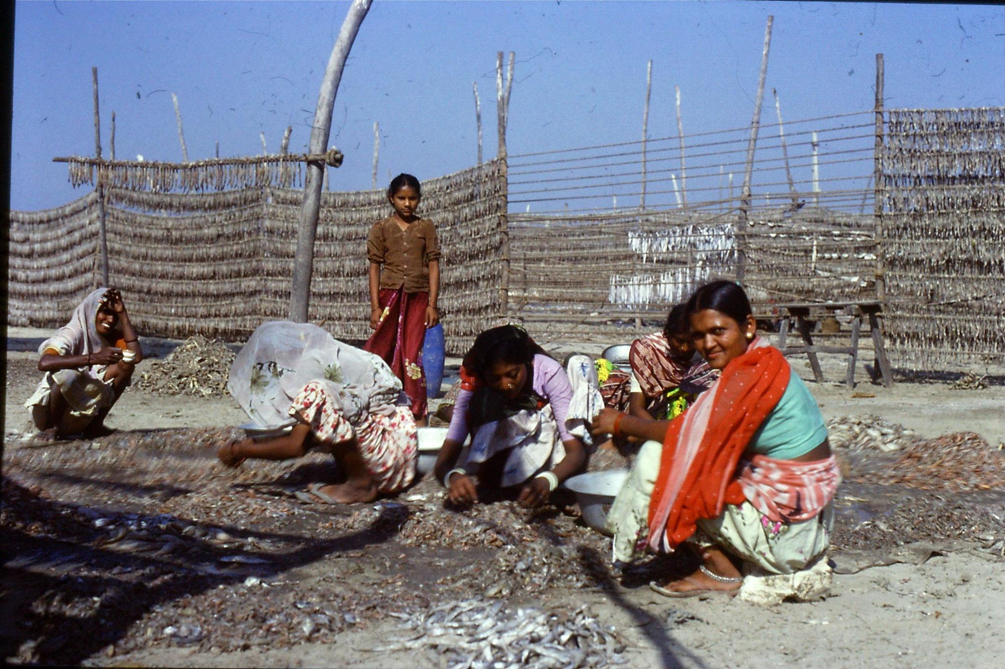 16/12/1989: 9: Diu Goghla fisherwomen