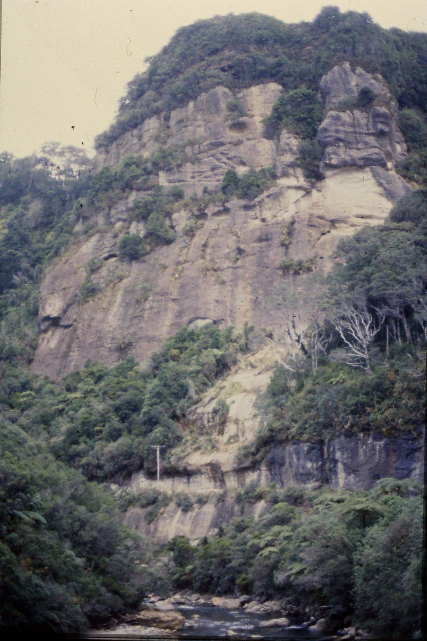 22/8/1990: 36: cliffs north of Greymouth