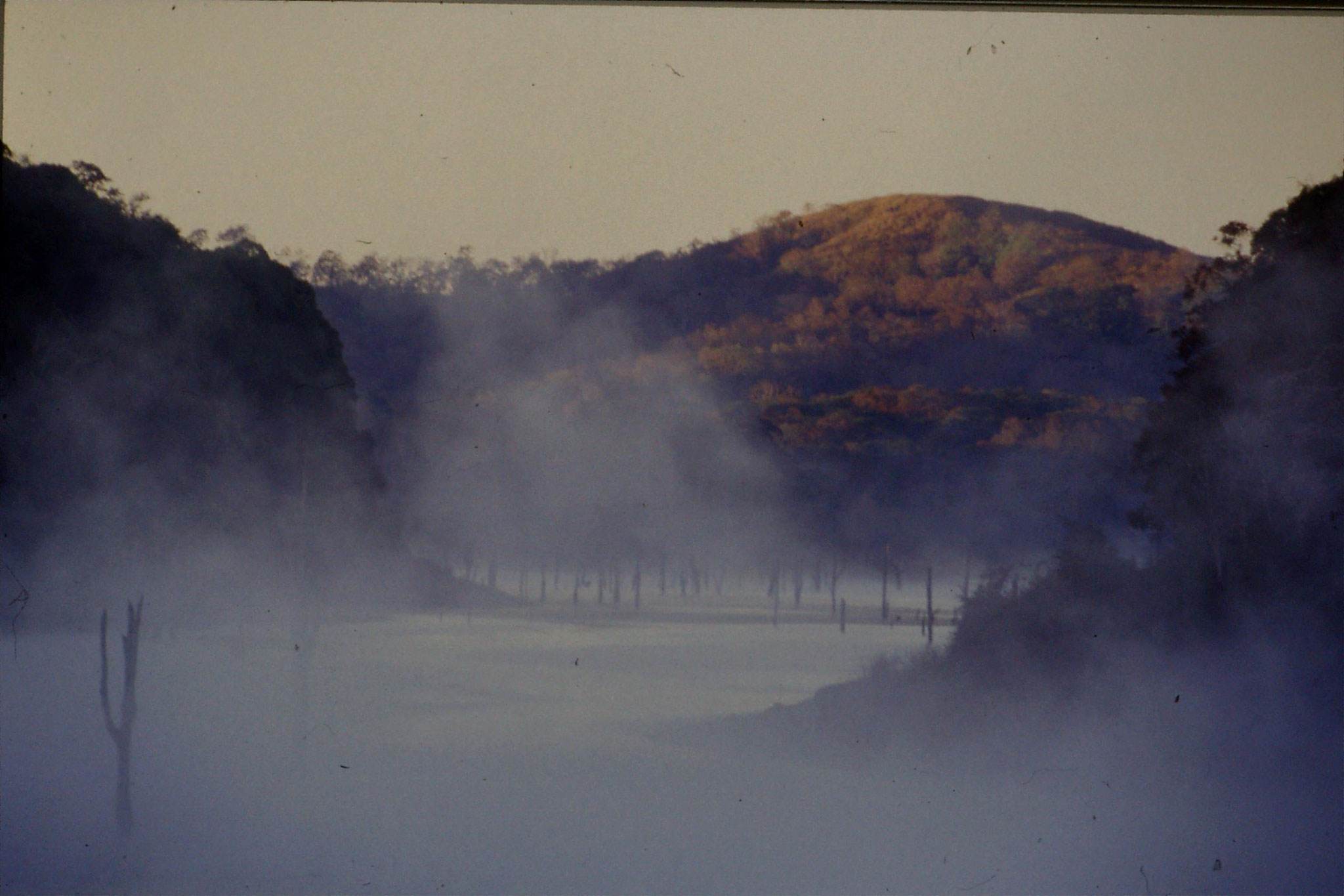 104/35: 23/2/1990 Periyar mist on lake in morning