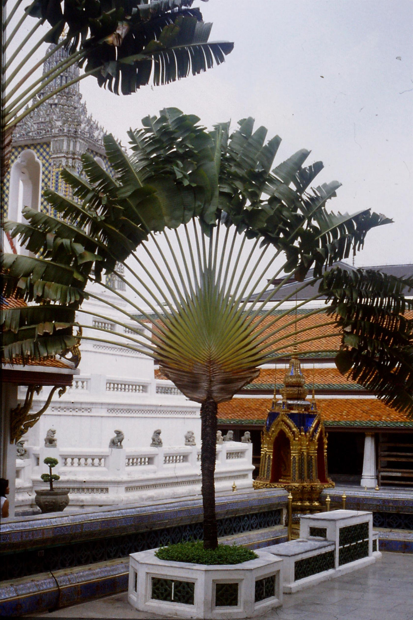 20/5/1990: 6: Bangkok Emerald Buddha temple