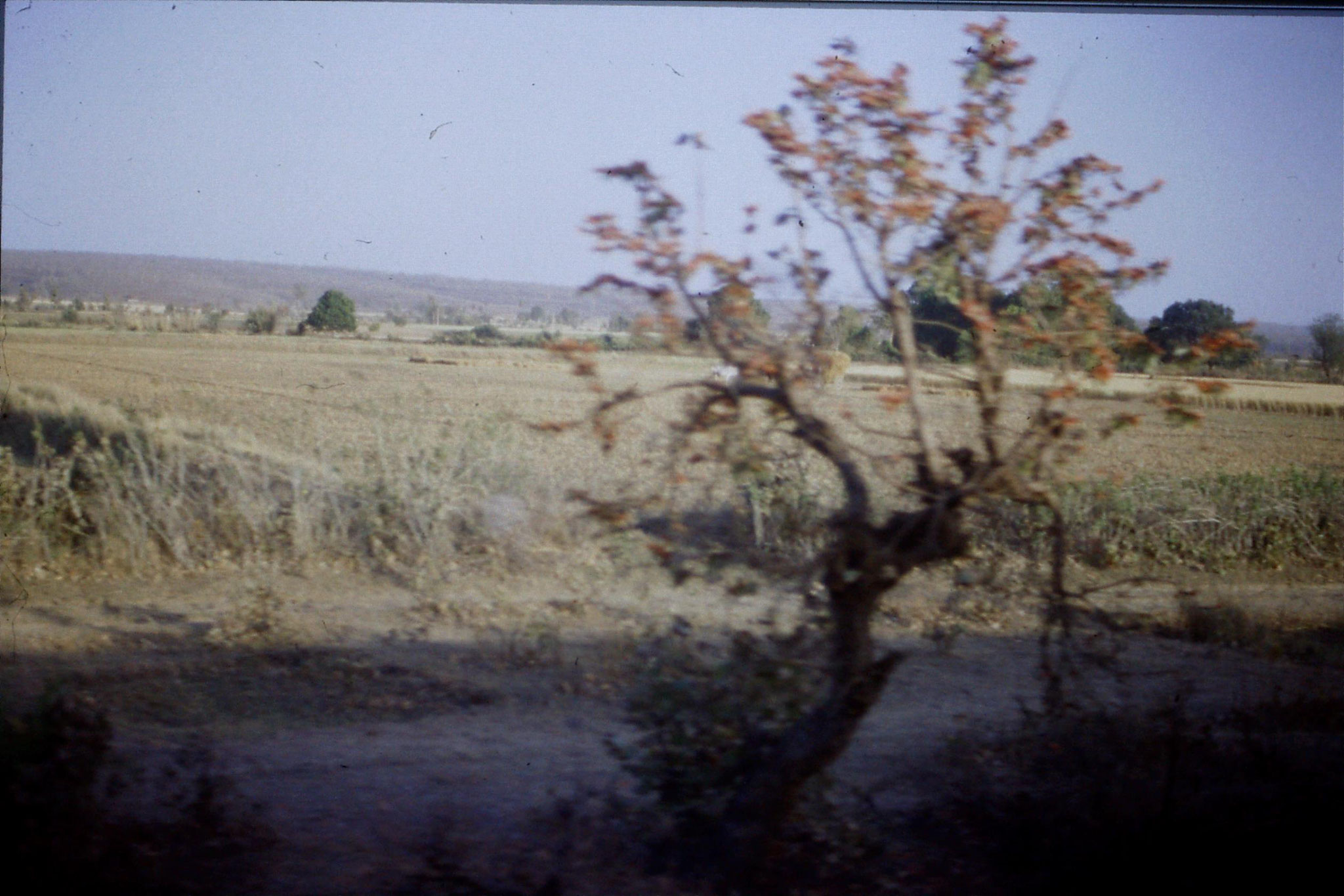 108/30: 24/3/1990 on train soon after Bhopal looking east
