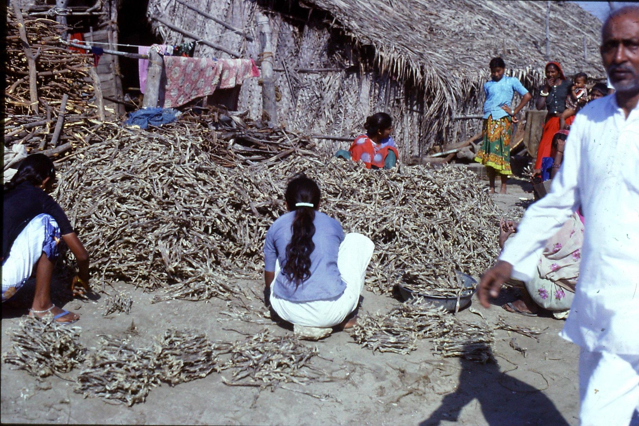 16/12/1989: 7: Diu Goghla fisherwomen