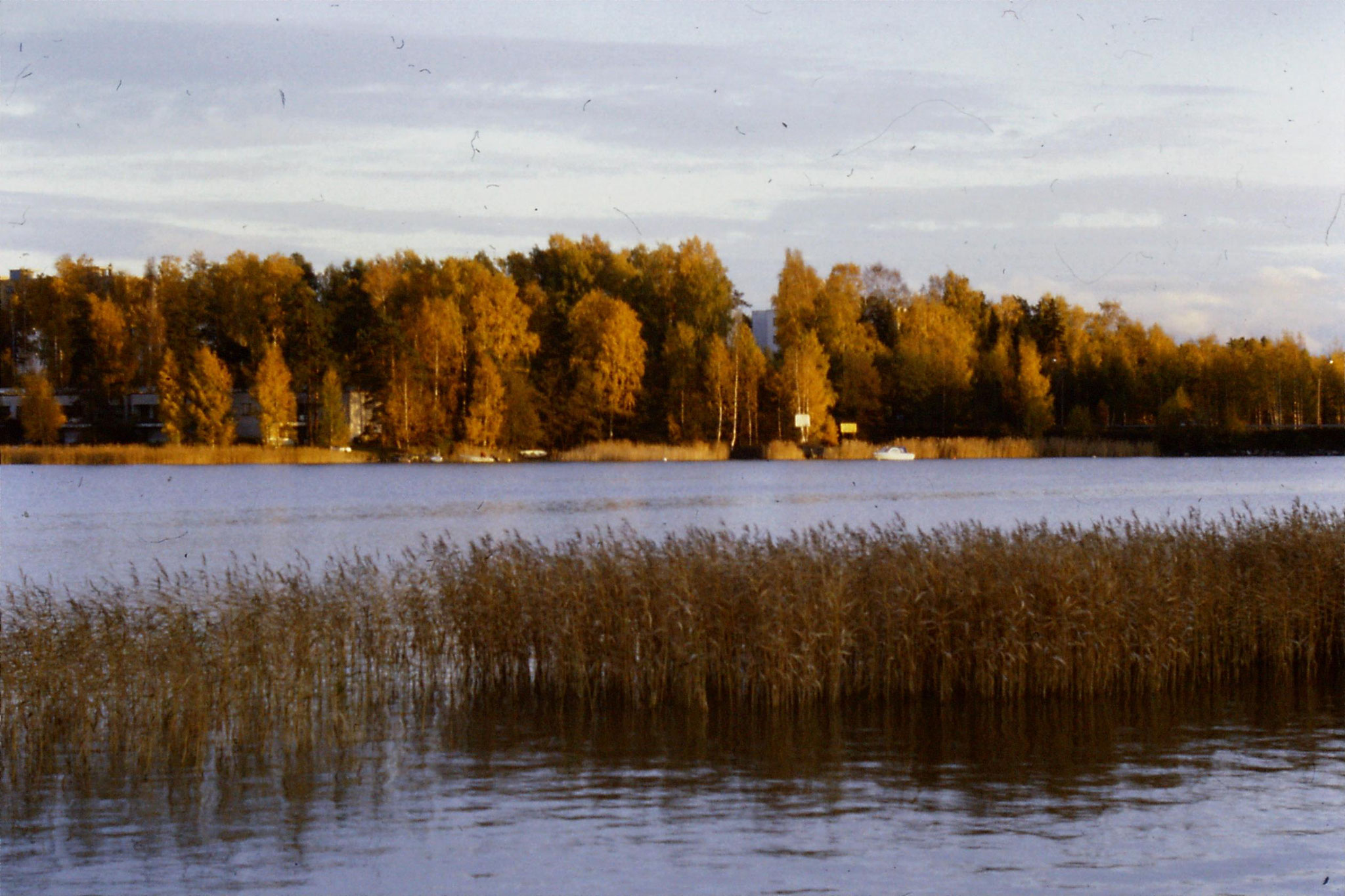 11/10/1988: 13: view across bay at Otaniemi