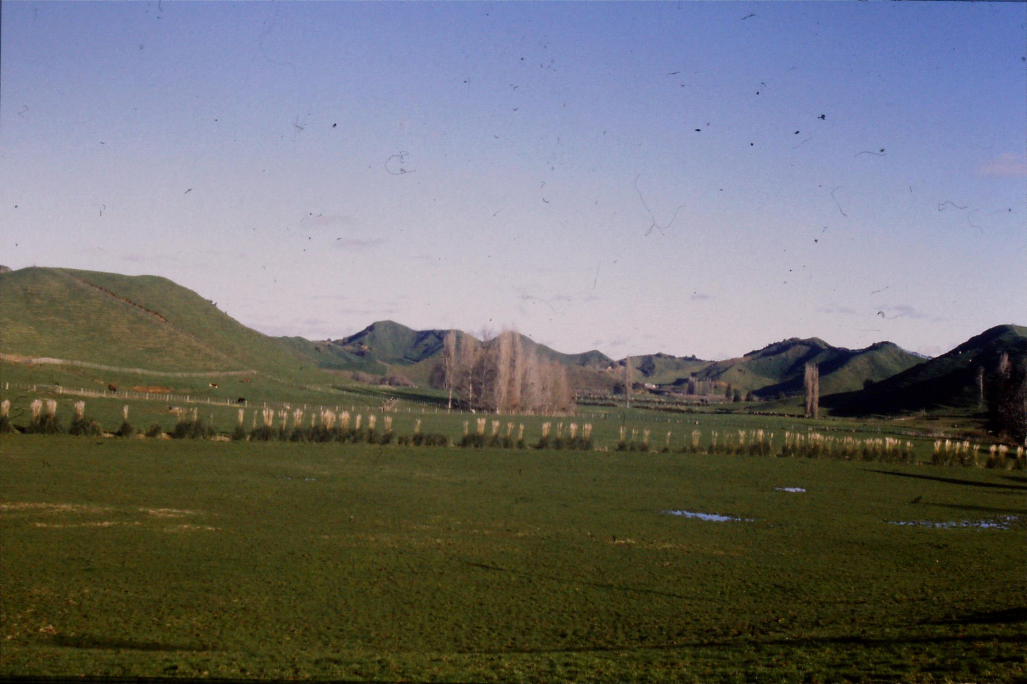 28/8/1990: 19: farmland near Douglas