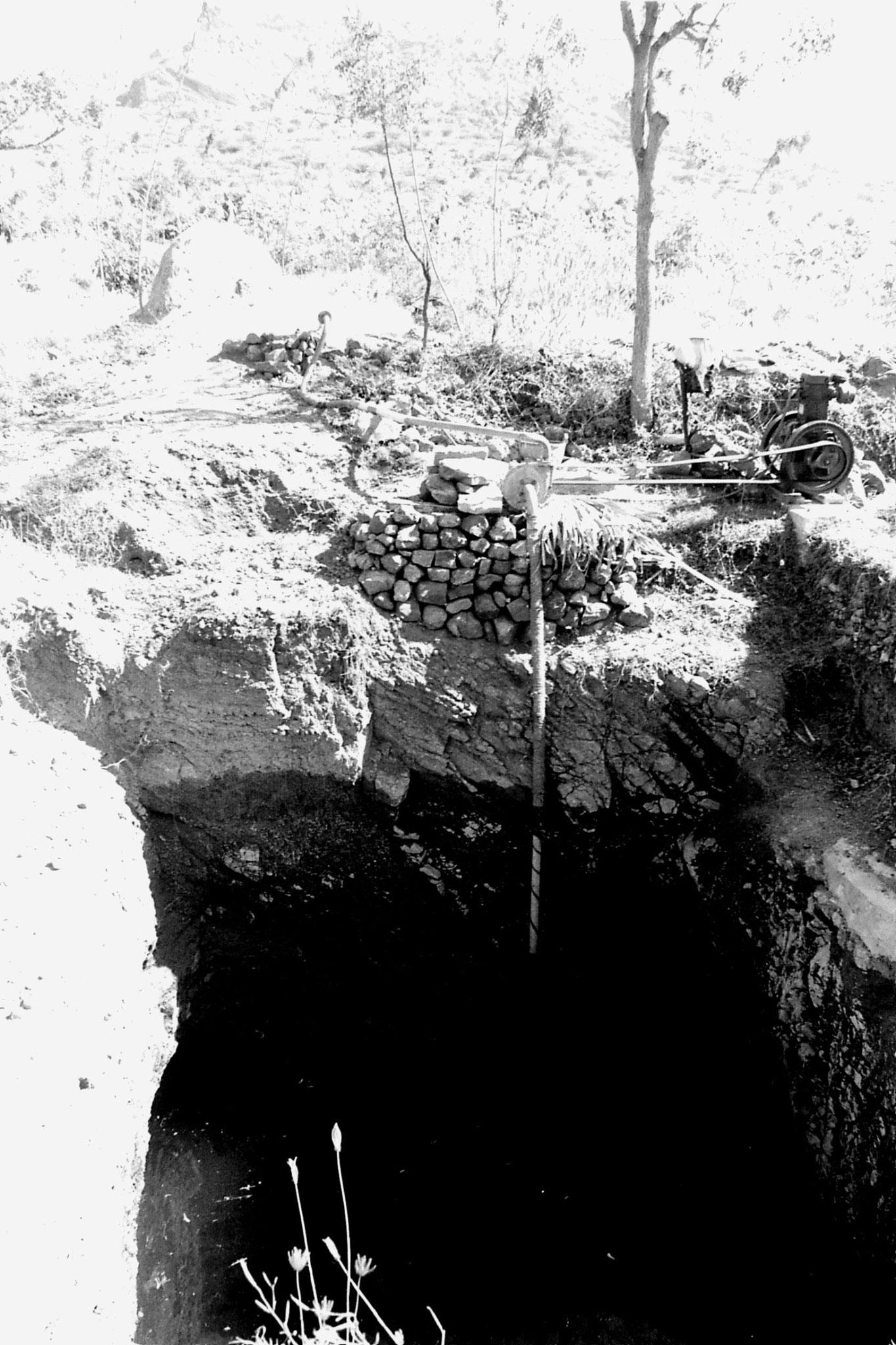 21/2/1990: 17: Batlagundi afforestation project
