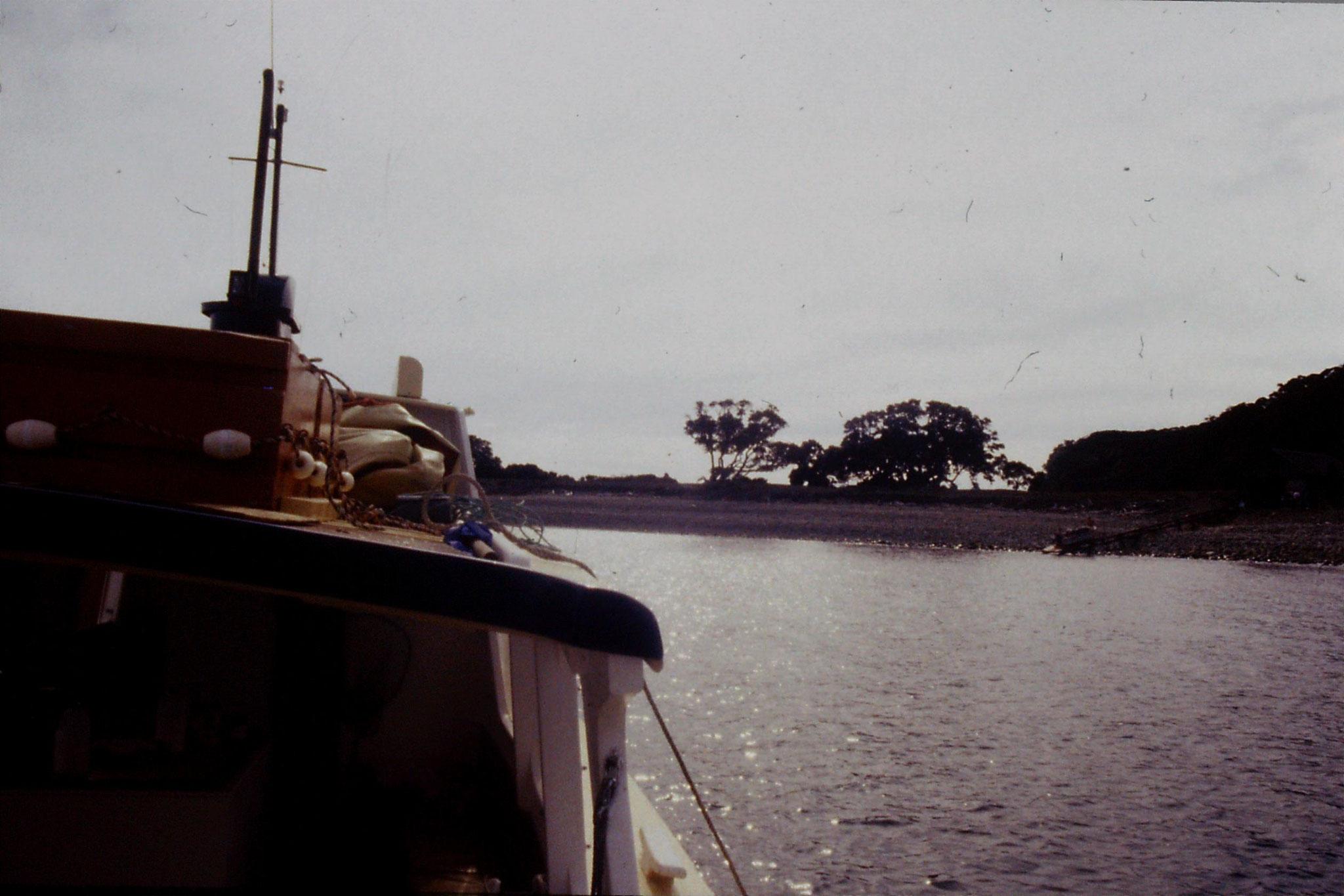 2/9/1990: 15: boat from Little Barrier Is