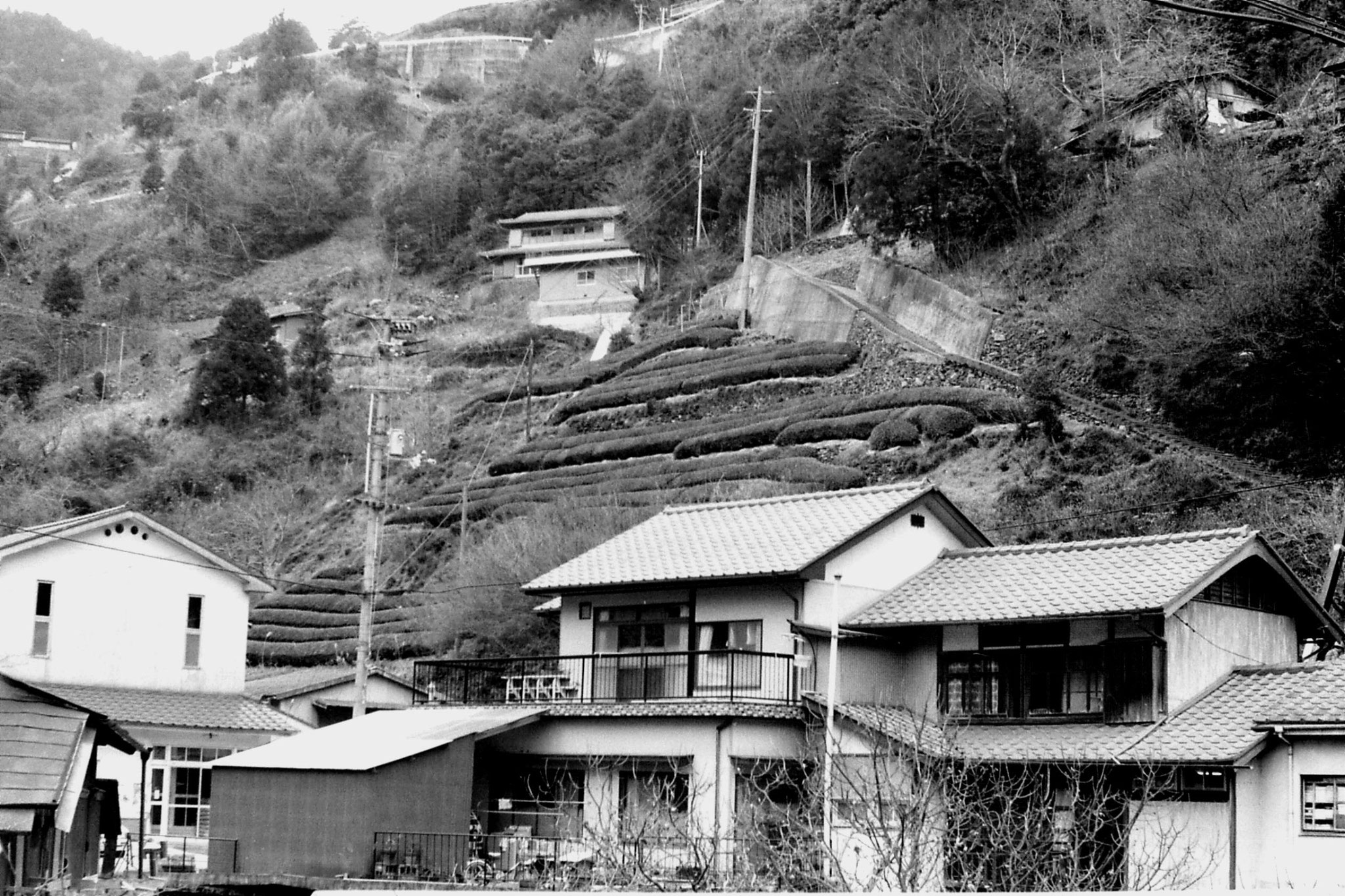 24/1/1989: 20:Yoshina Gorge