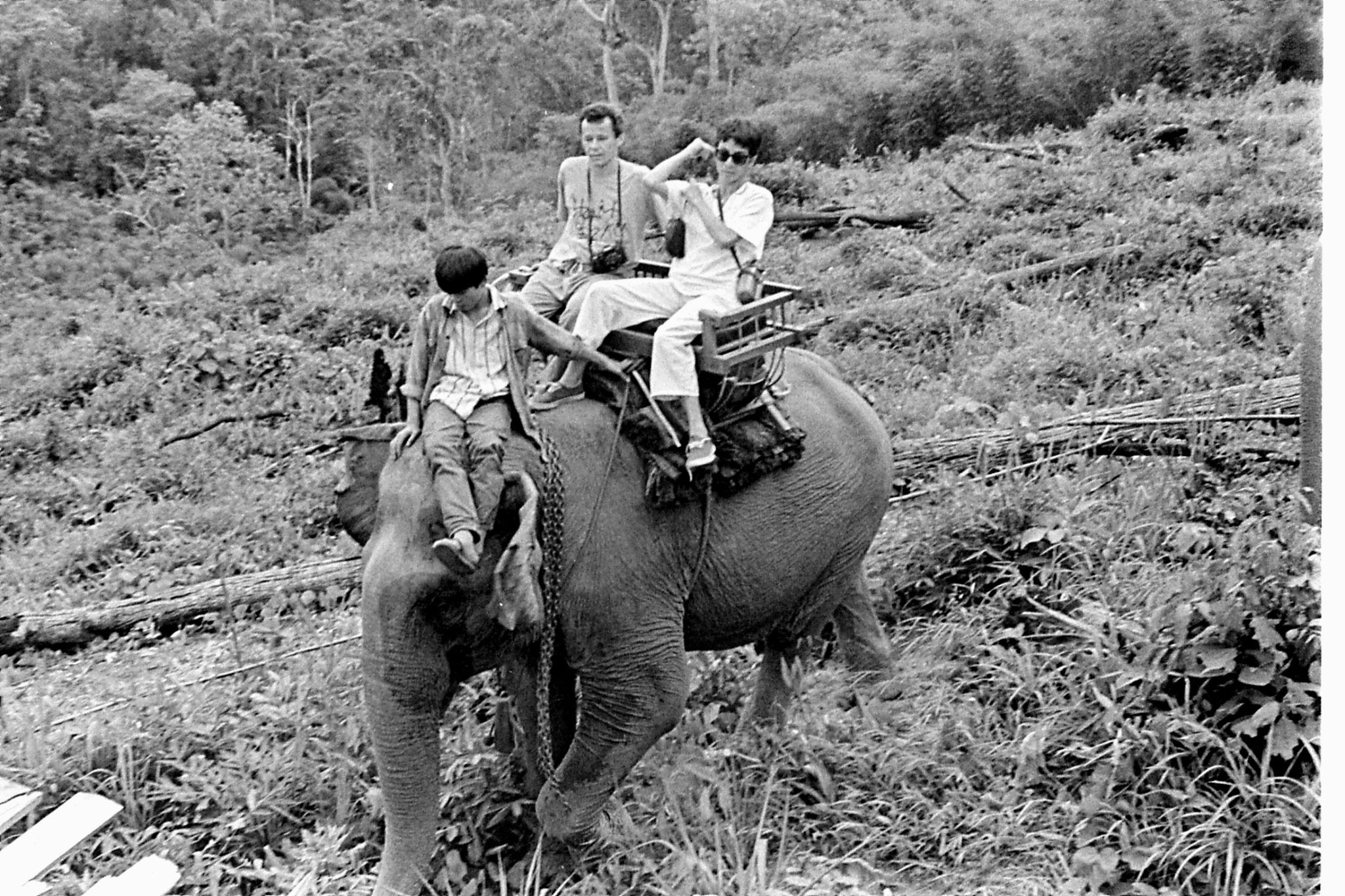 13/6/1990: 30: Last day of Trek, on elephant