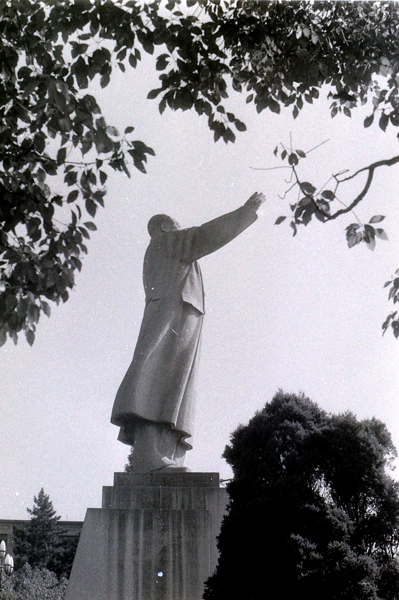 19/7/1989: 3: Mao