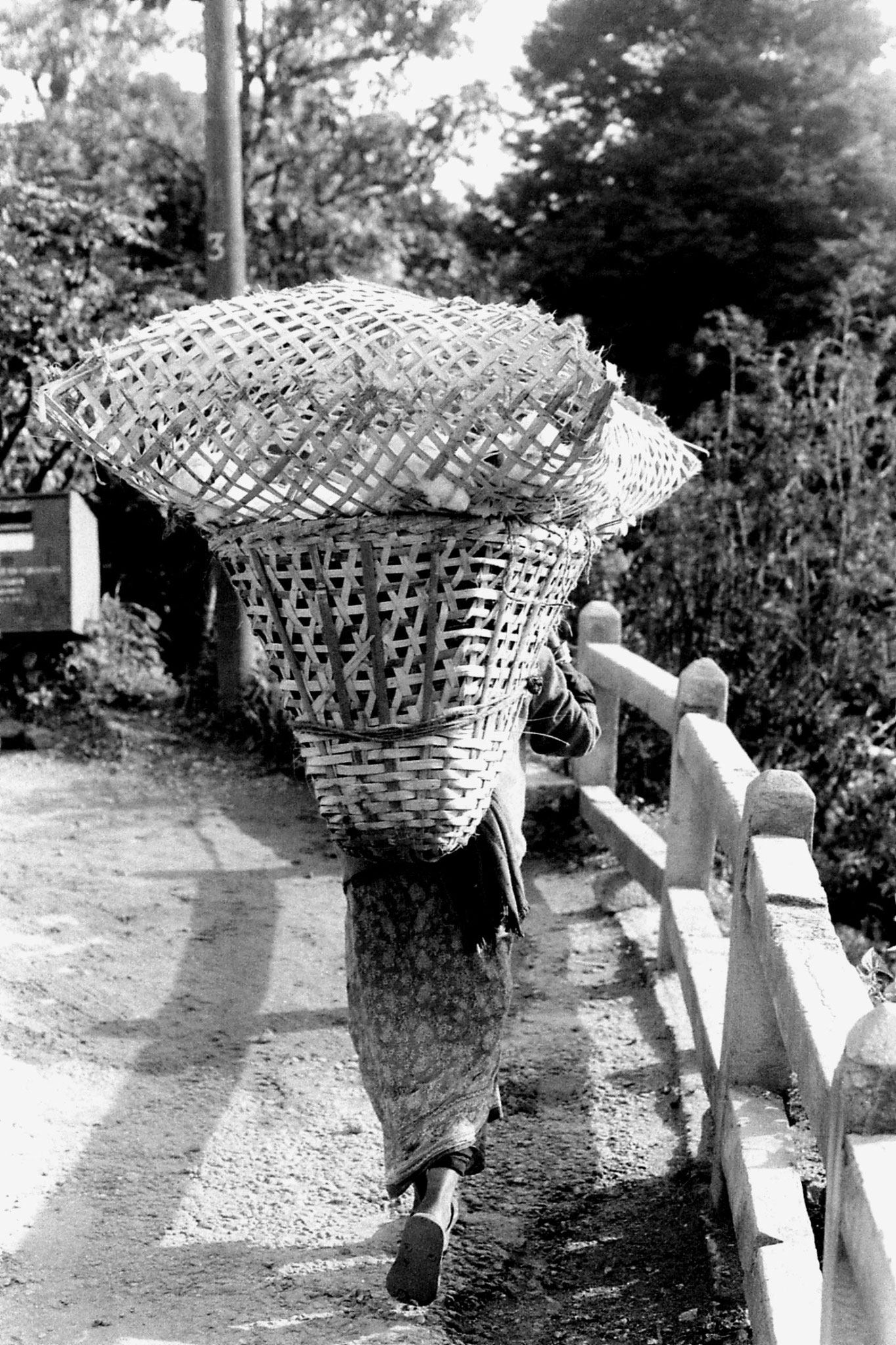1/5/1990: 3: Darjeeling woman with chicken in basket