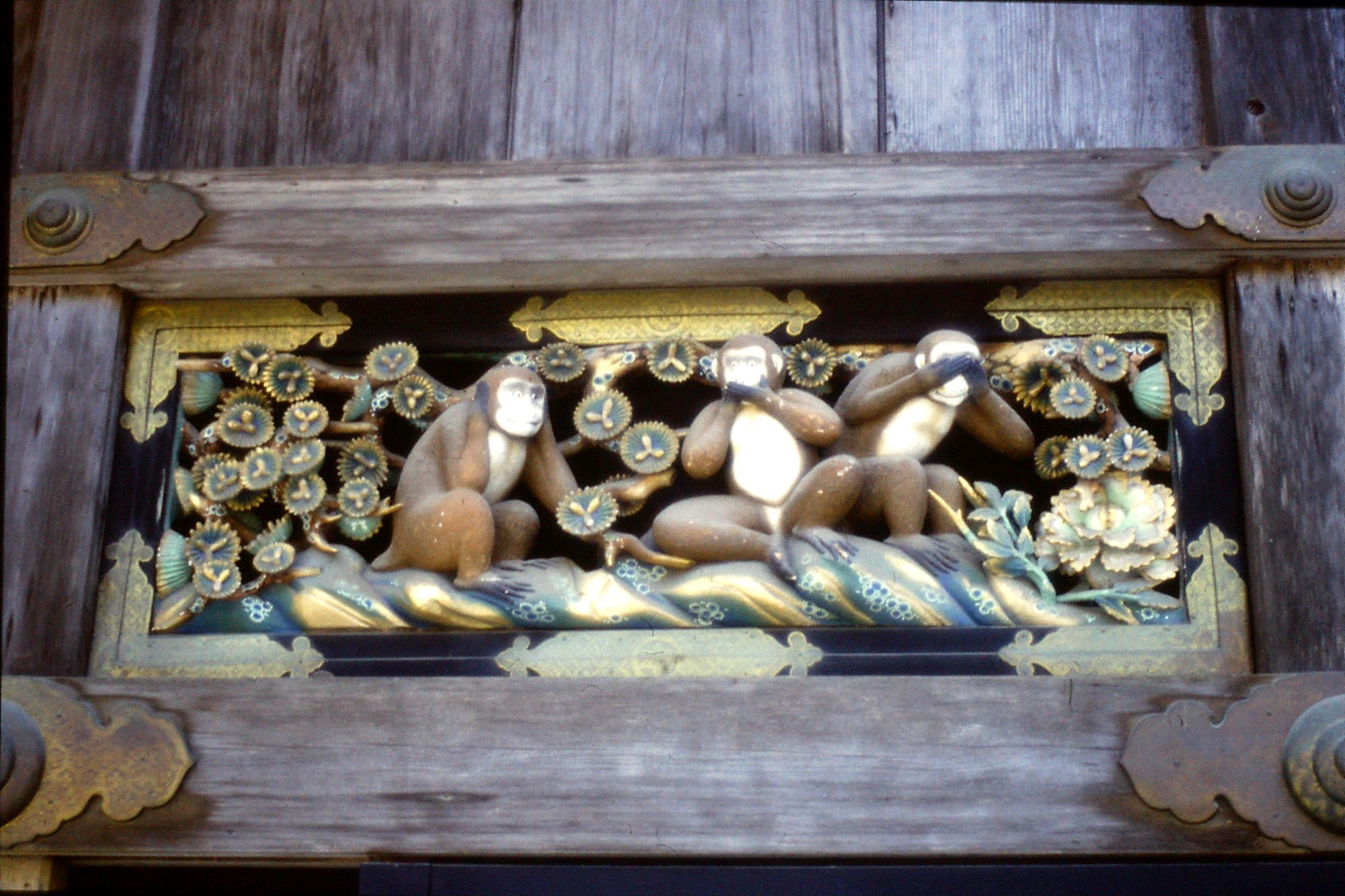 31/1/1989: 13: three monkeys at sacred house