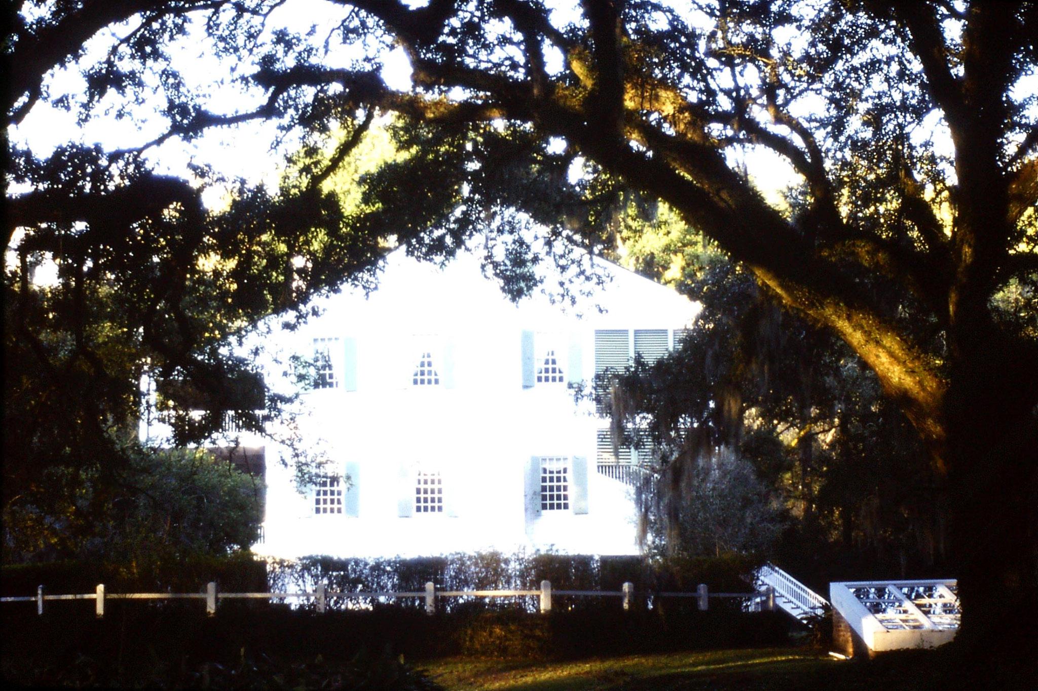 14/1/1991: 1: Audubon House