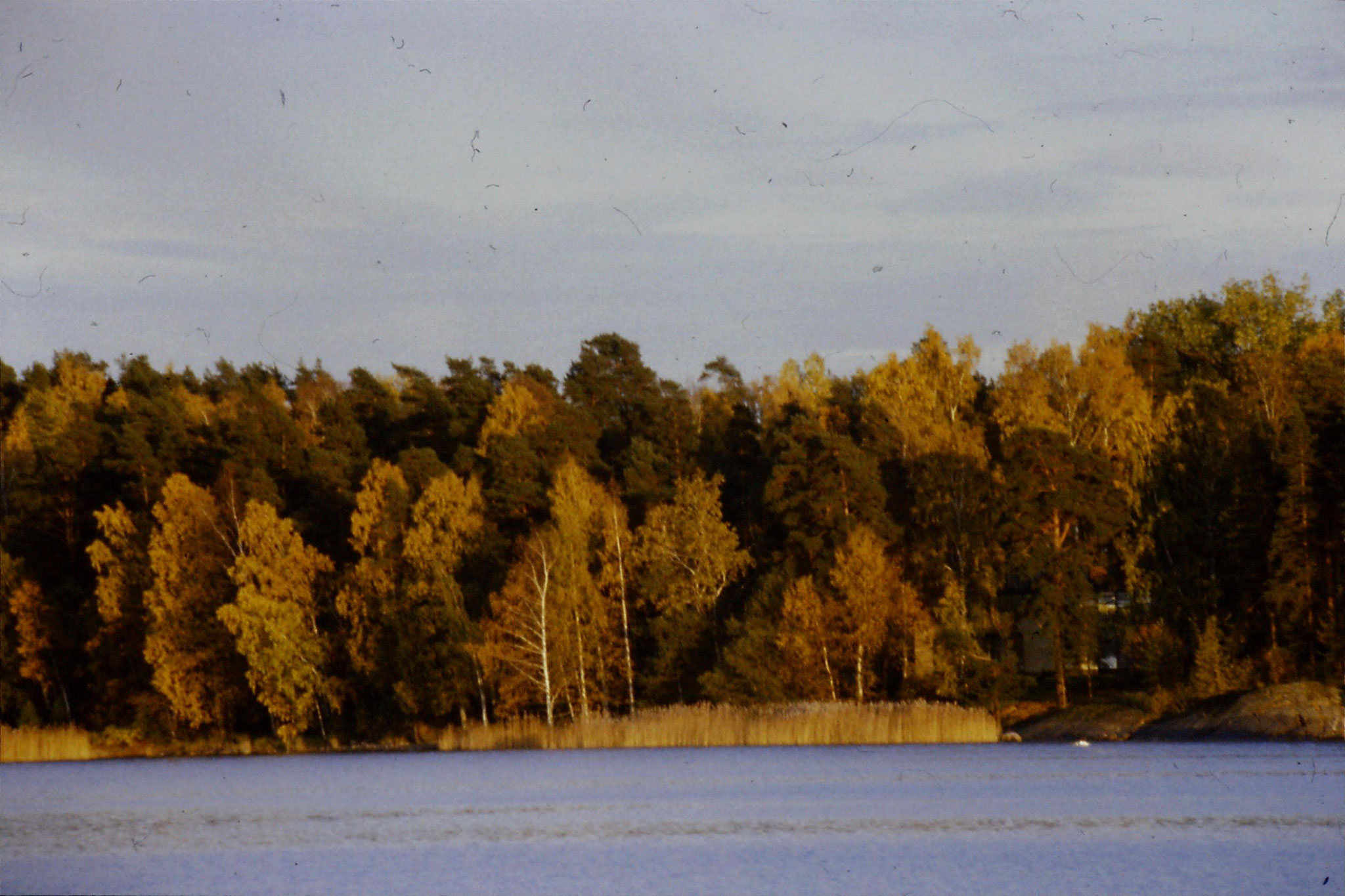 11/10/1988: 12: view across bay at Otaniemi