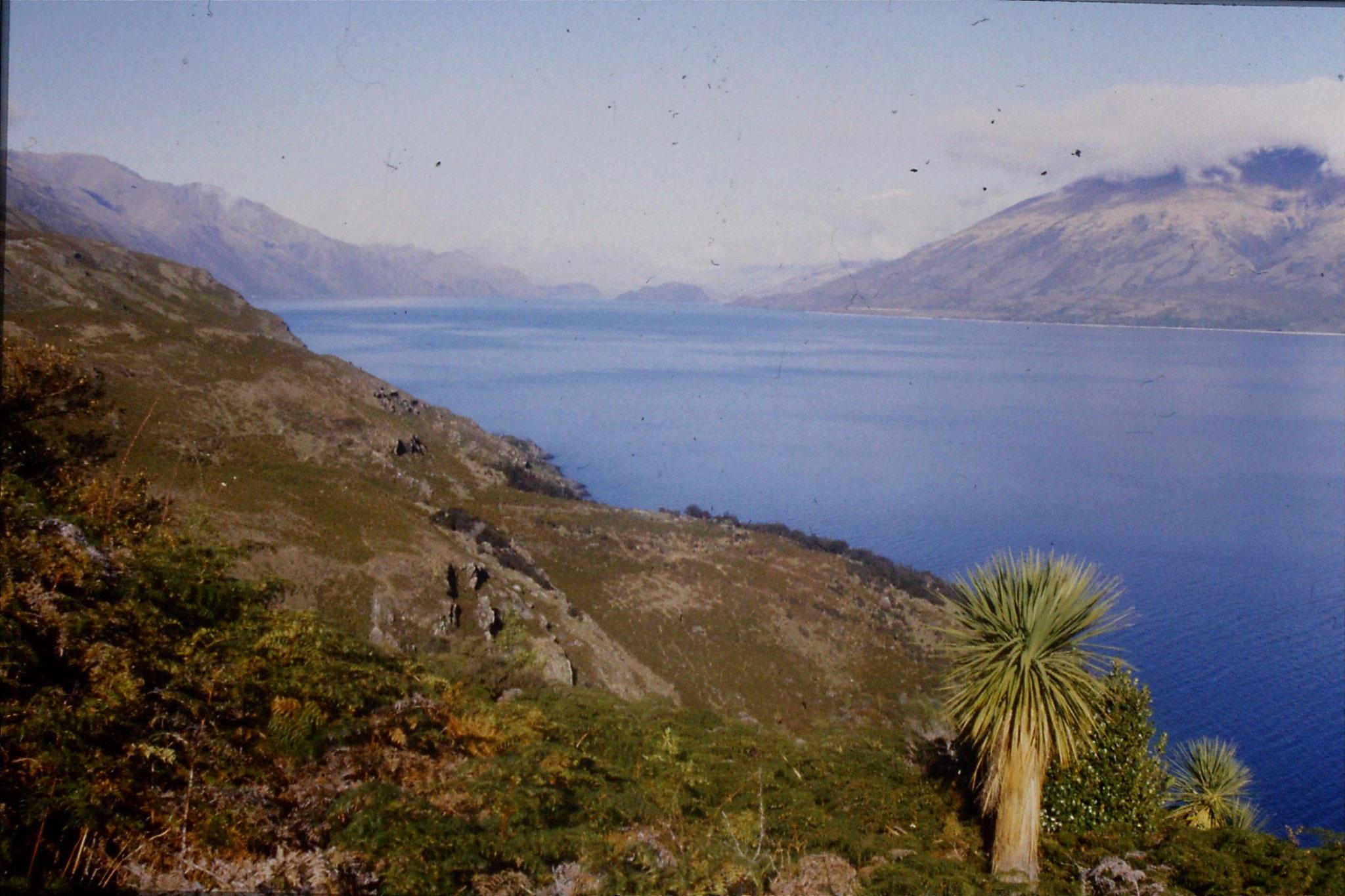 21/8/1990: 24: Lake Wanaka