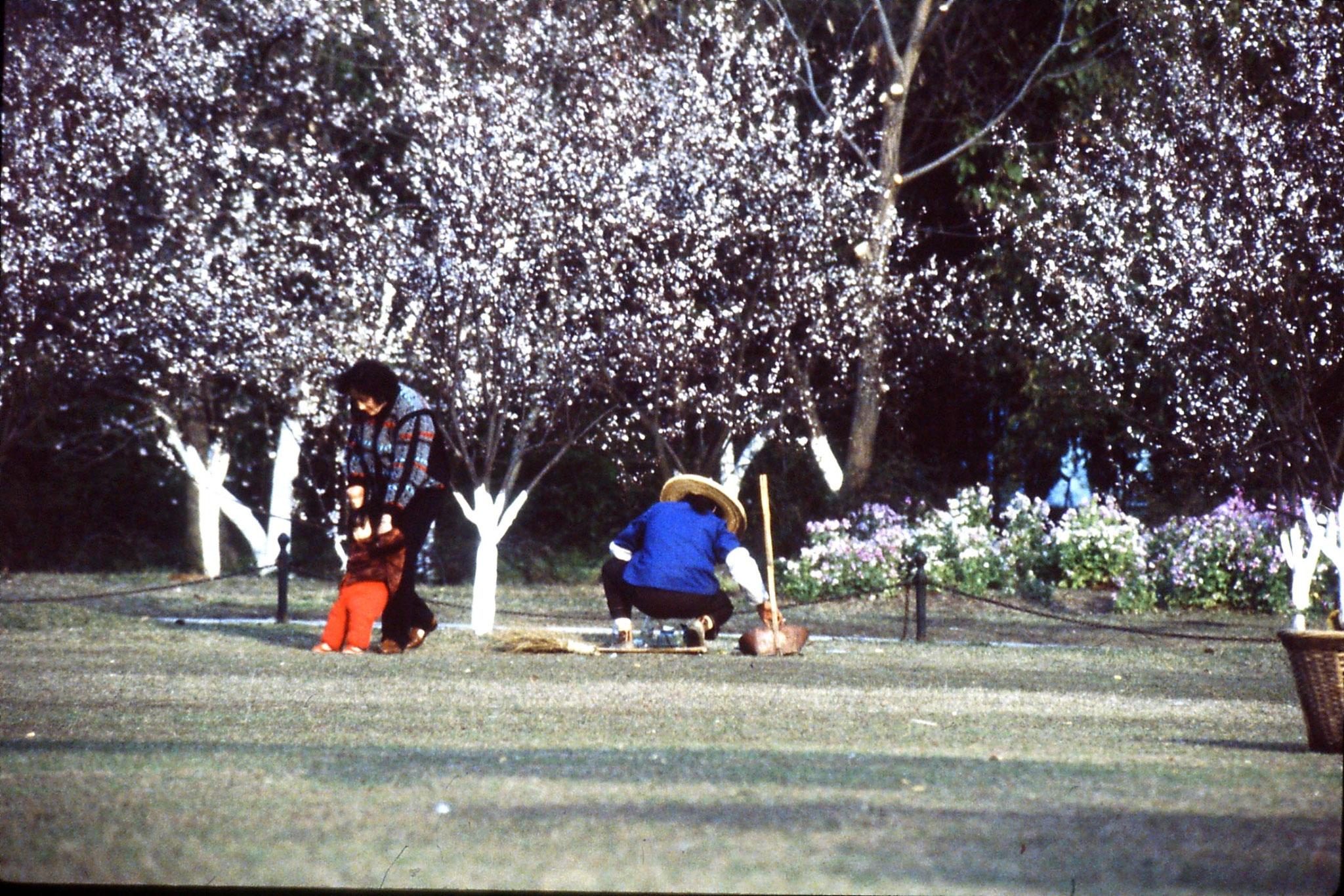 26/3/1989: 21: Huageng Park